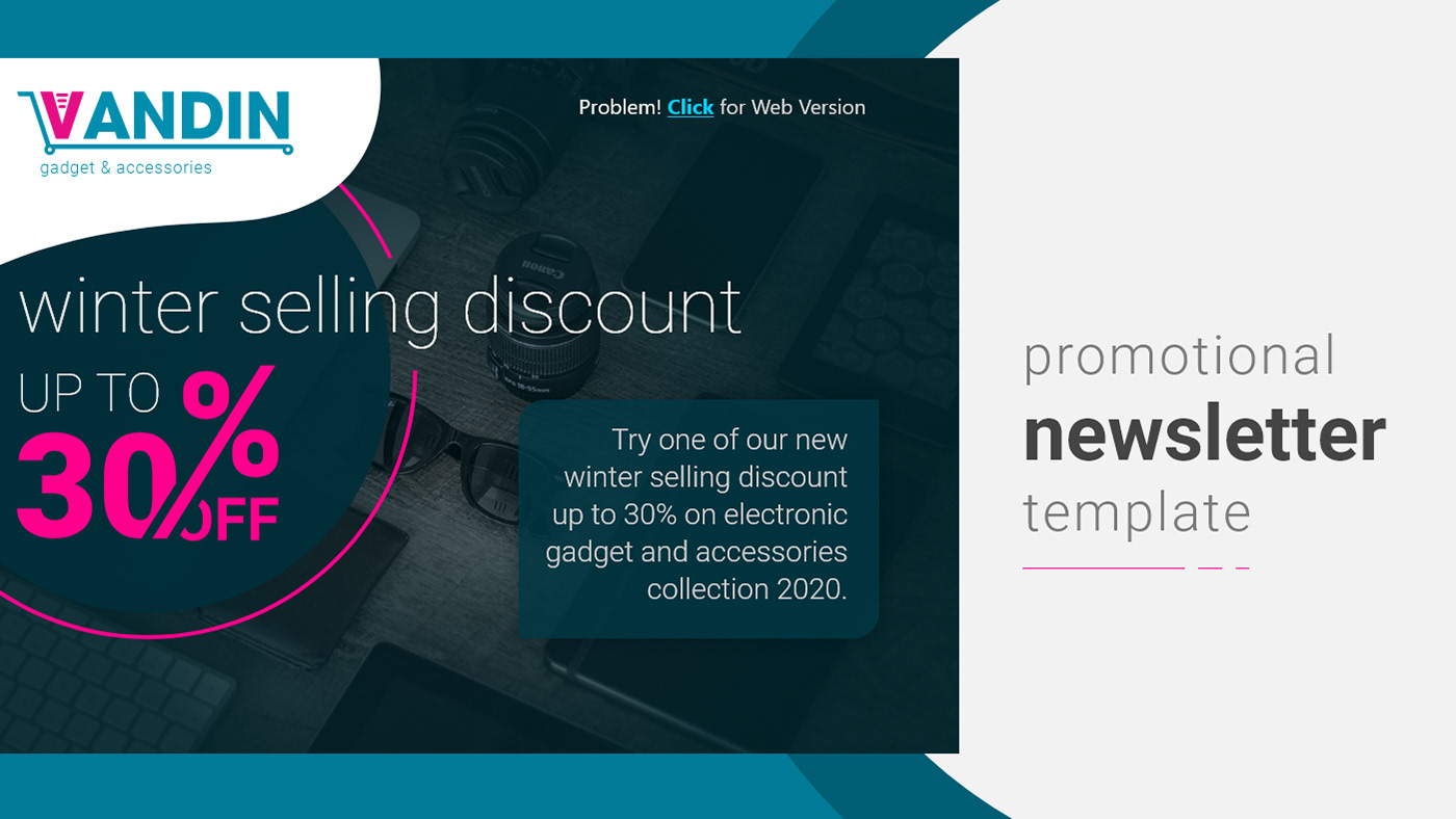 web templage newsletter template email template branding  Responsive web design ui design UX design