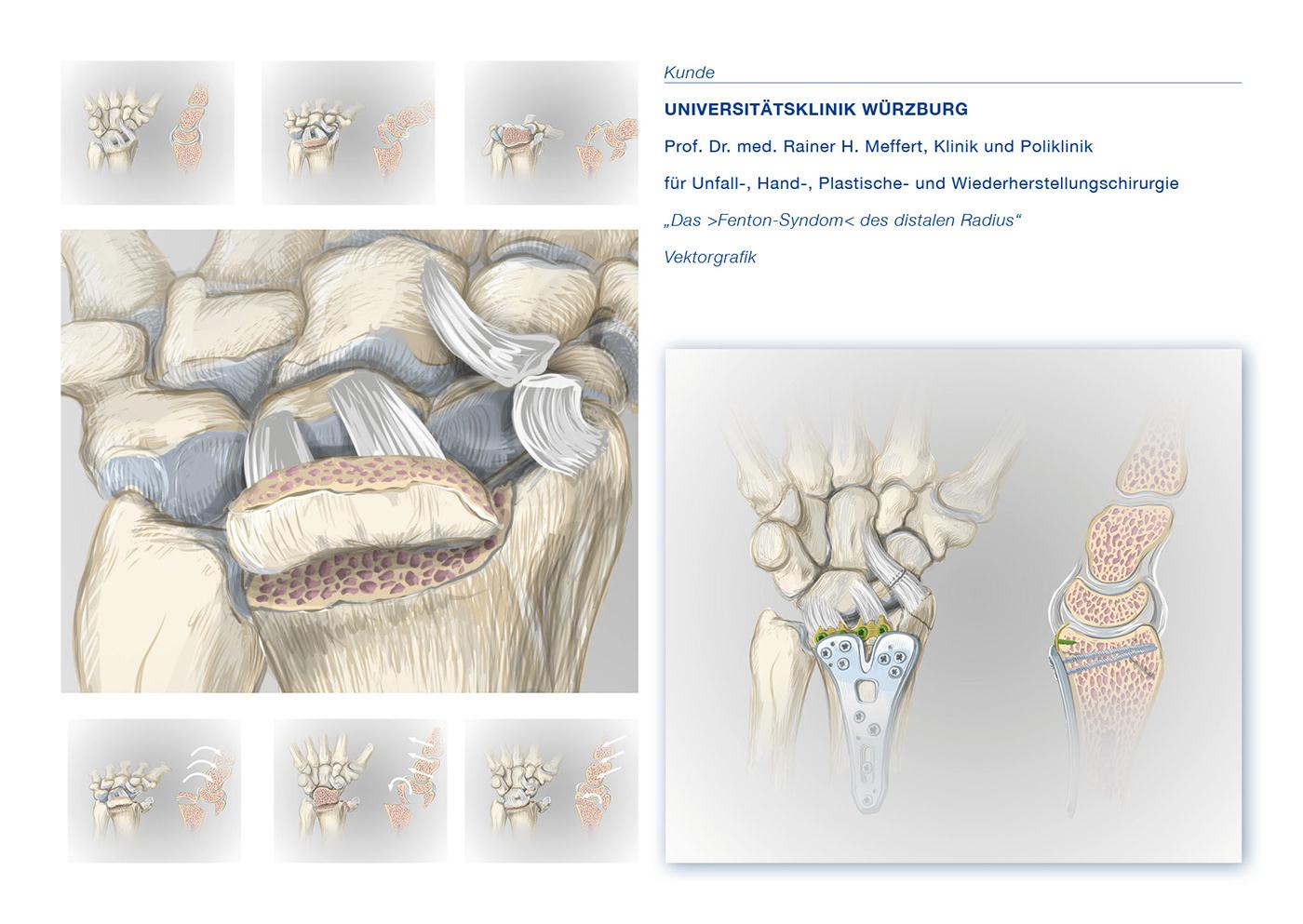 anatomie Medizin Archeologie