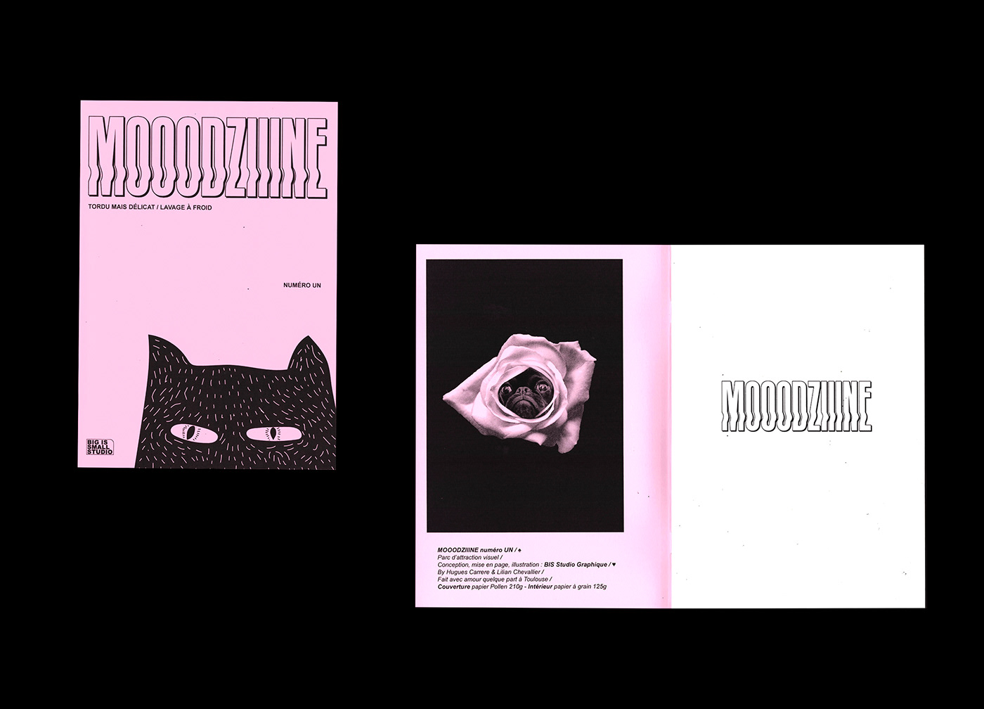 Booklet fanzine colors blue yellow green Layout poster ILLUSTRATION  Drawing