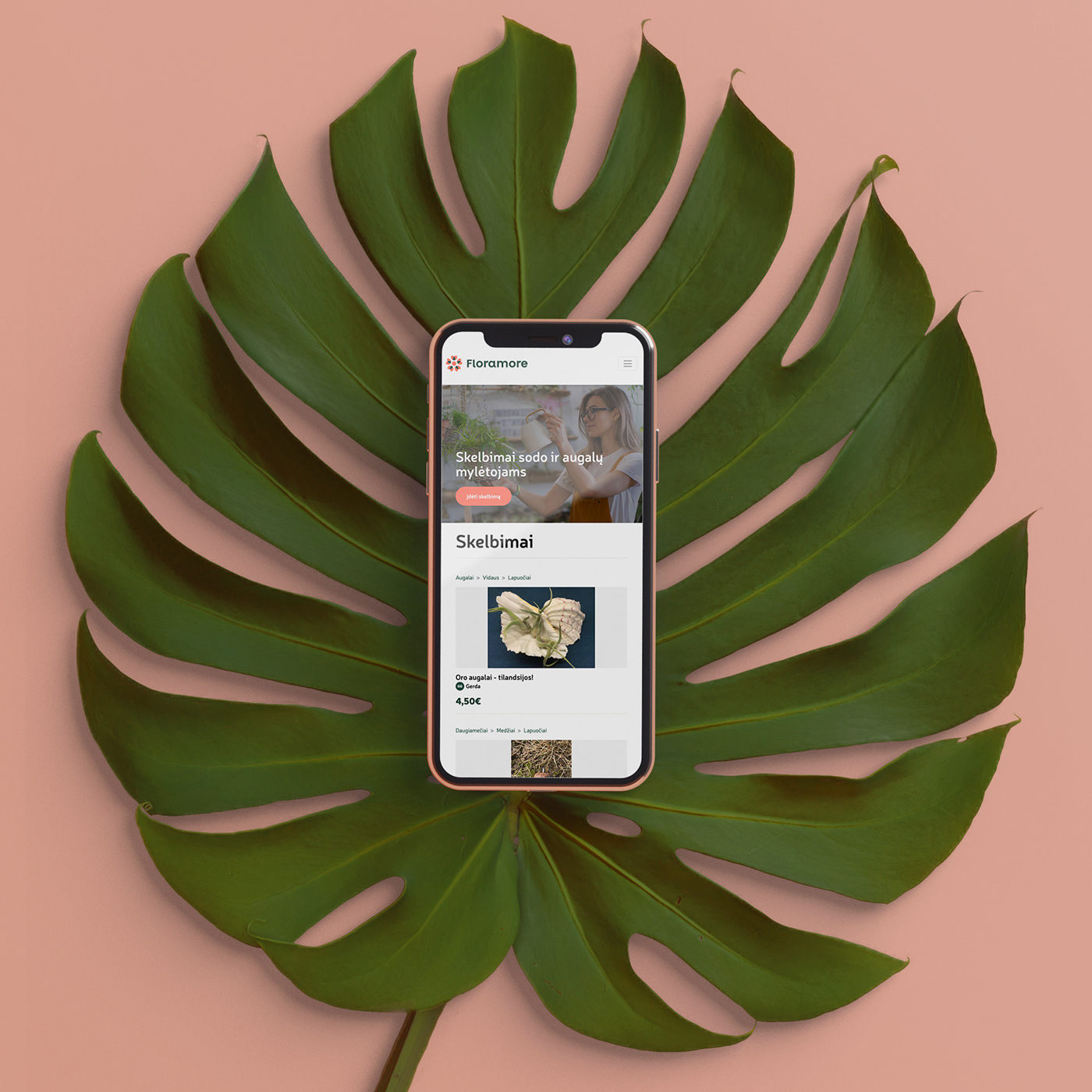 aliuslt,design,floramore,Flowers,plants,Web,mobile,Nature,Responsive