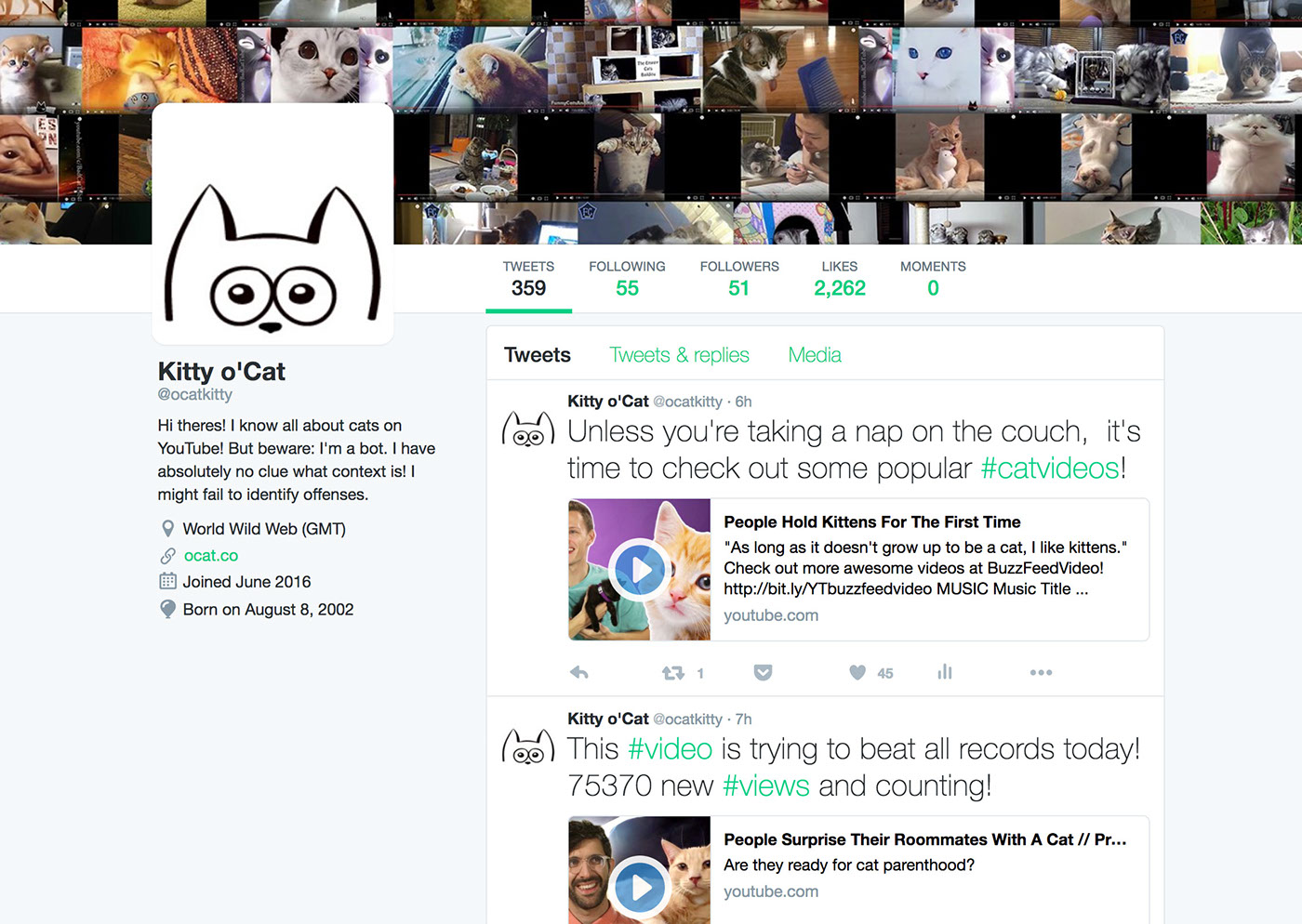 videos youtube data visualization views trends uploads cats Networked Art api twitter