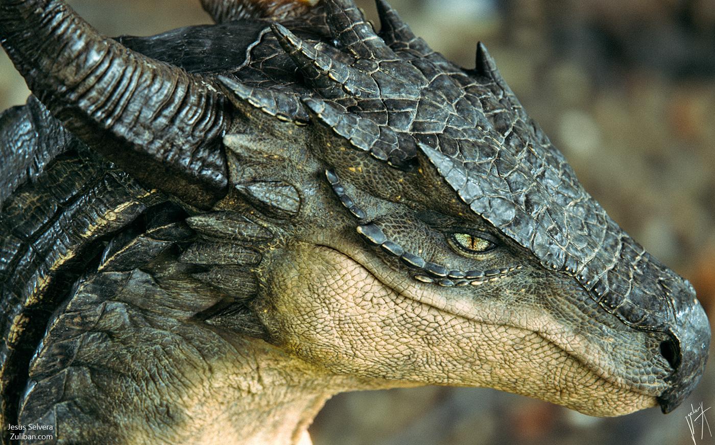 каркас картинки реалистичные драконы есть