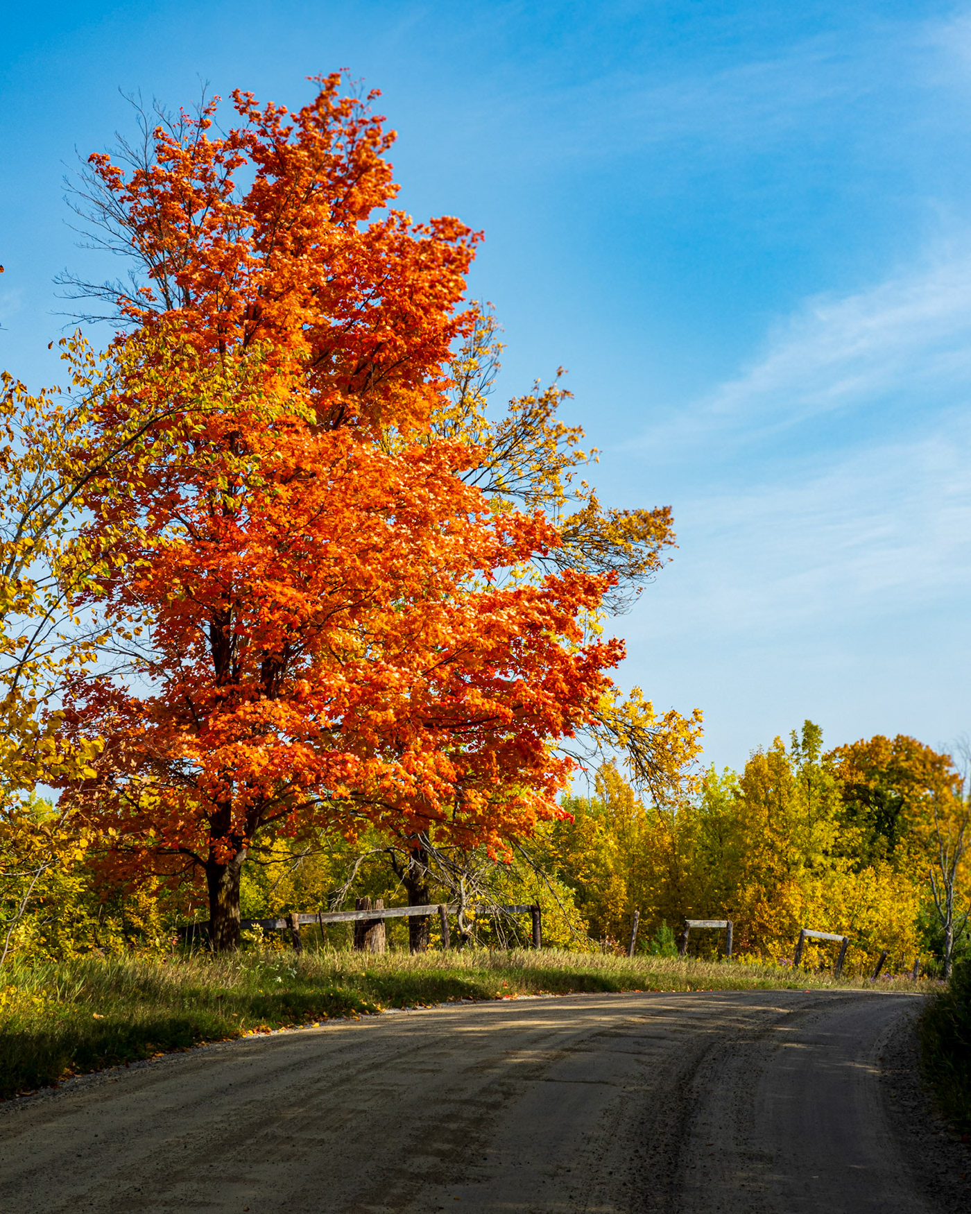 autumn color Fall Kawarthas landscapes Nature Ontario scenic