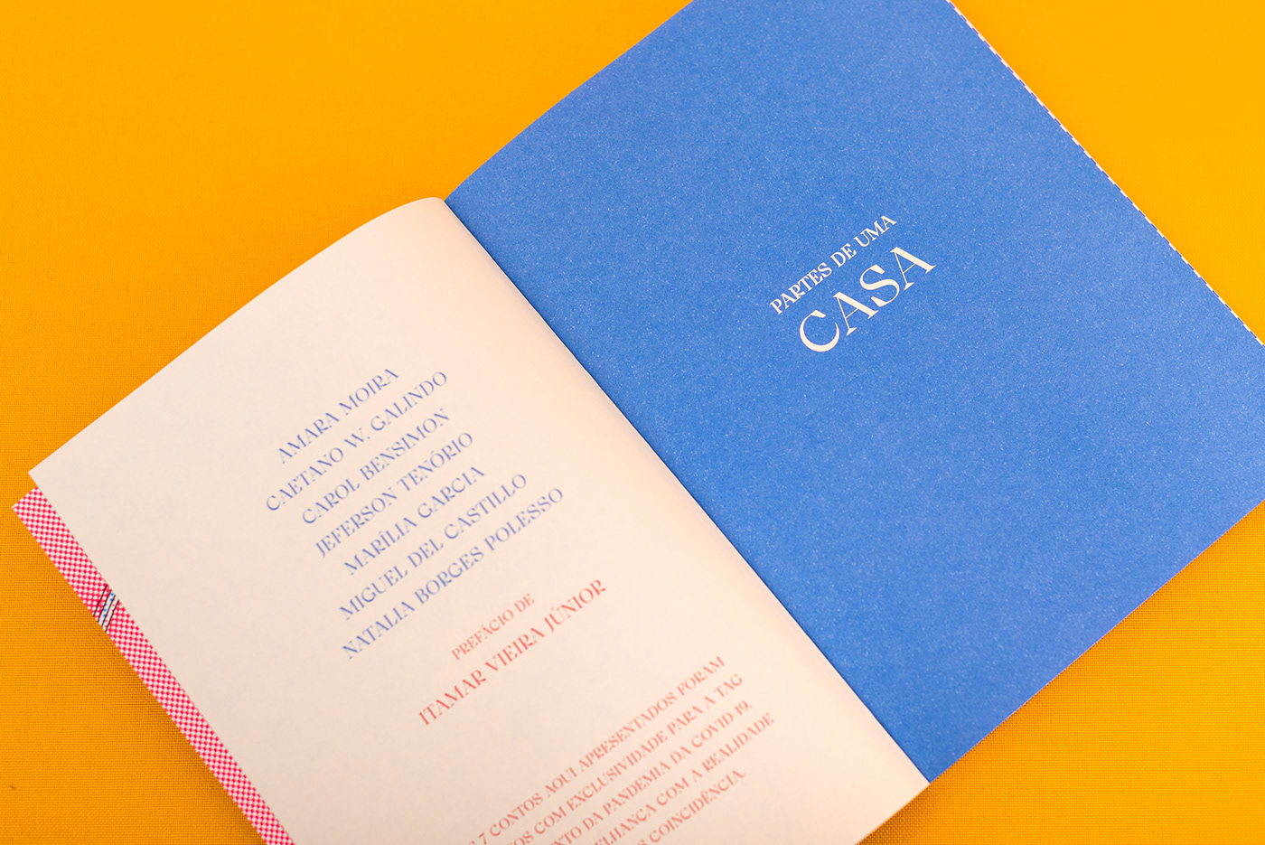 book cover book design Cover Book halftone Livro she designs books short stories book