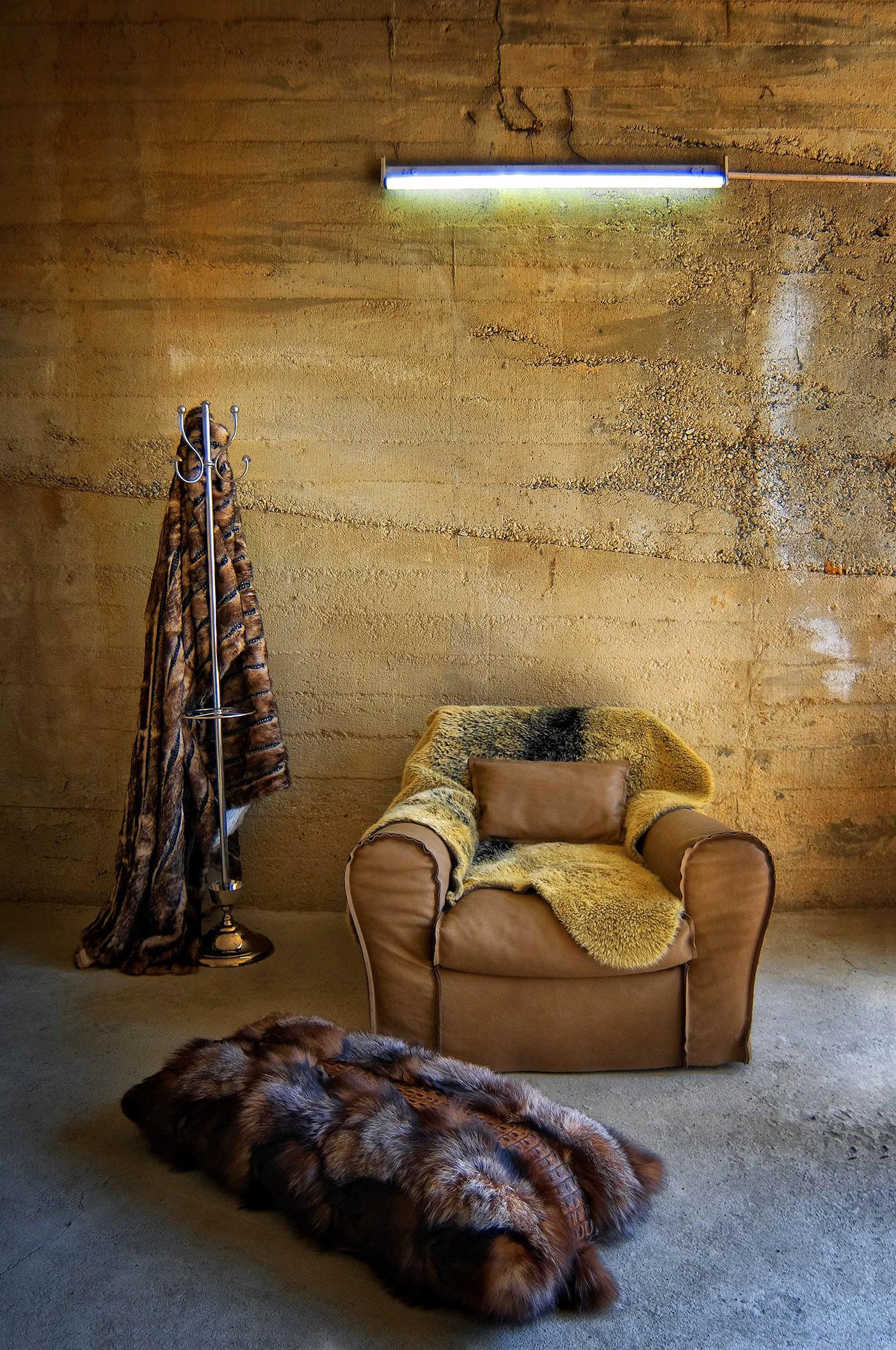 decoration Interior Photography
