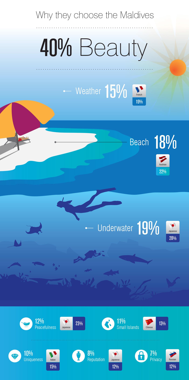 Maldives ILLUSTRATION  underwater tourism data visualization information presentation relax vector Graphs beach