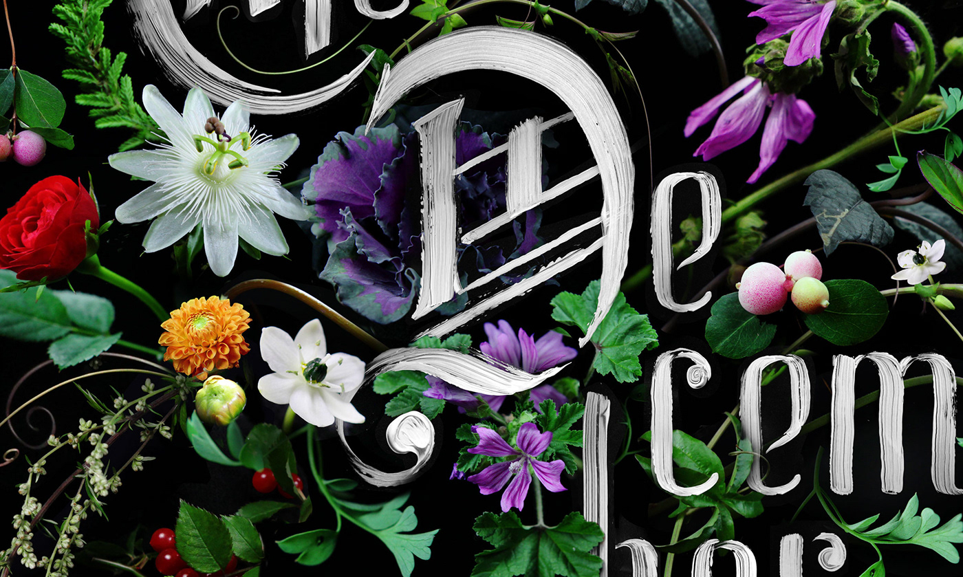 music poster creative lettering Flowers photorealistic 3D Type paint Hand Painted