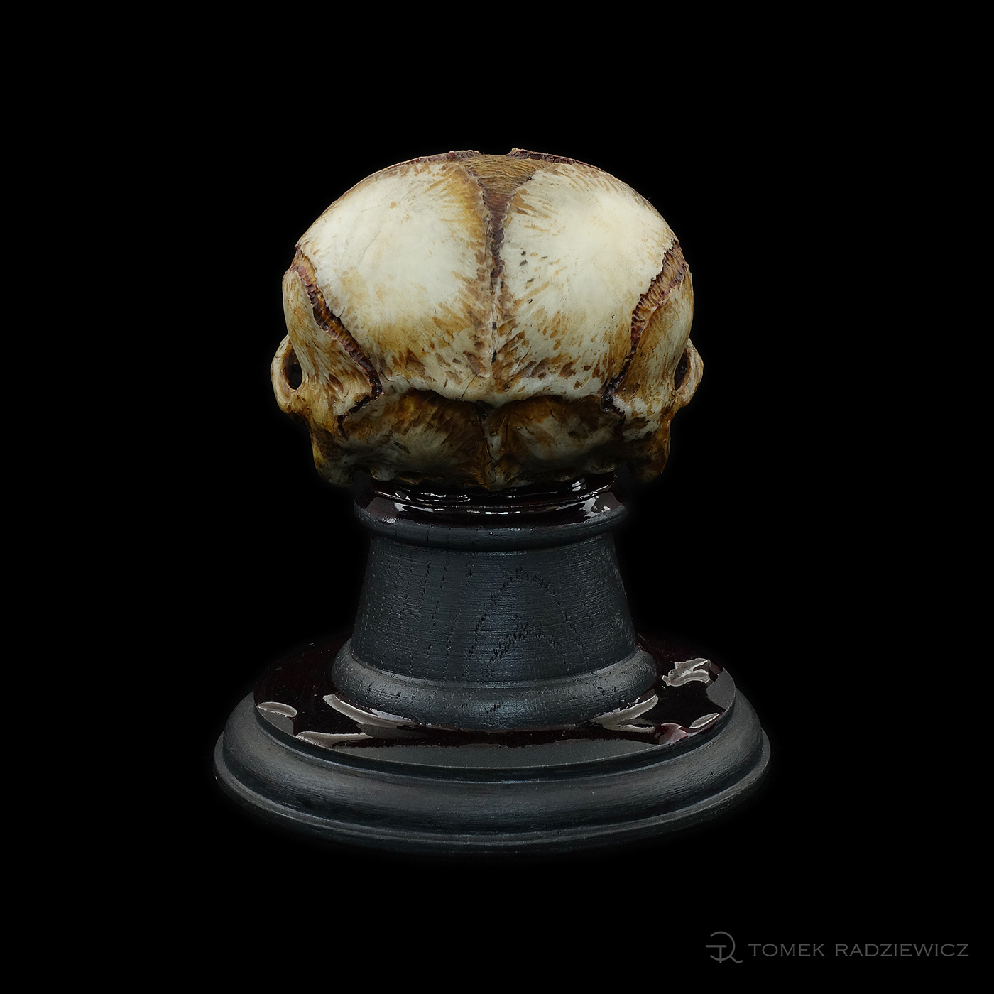 Character design  sculpture skull