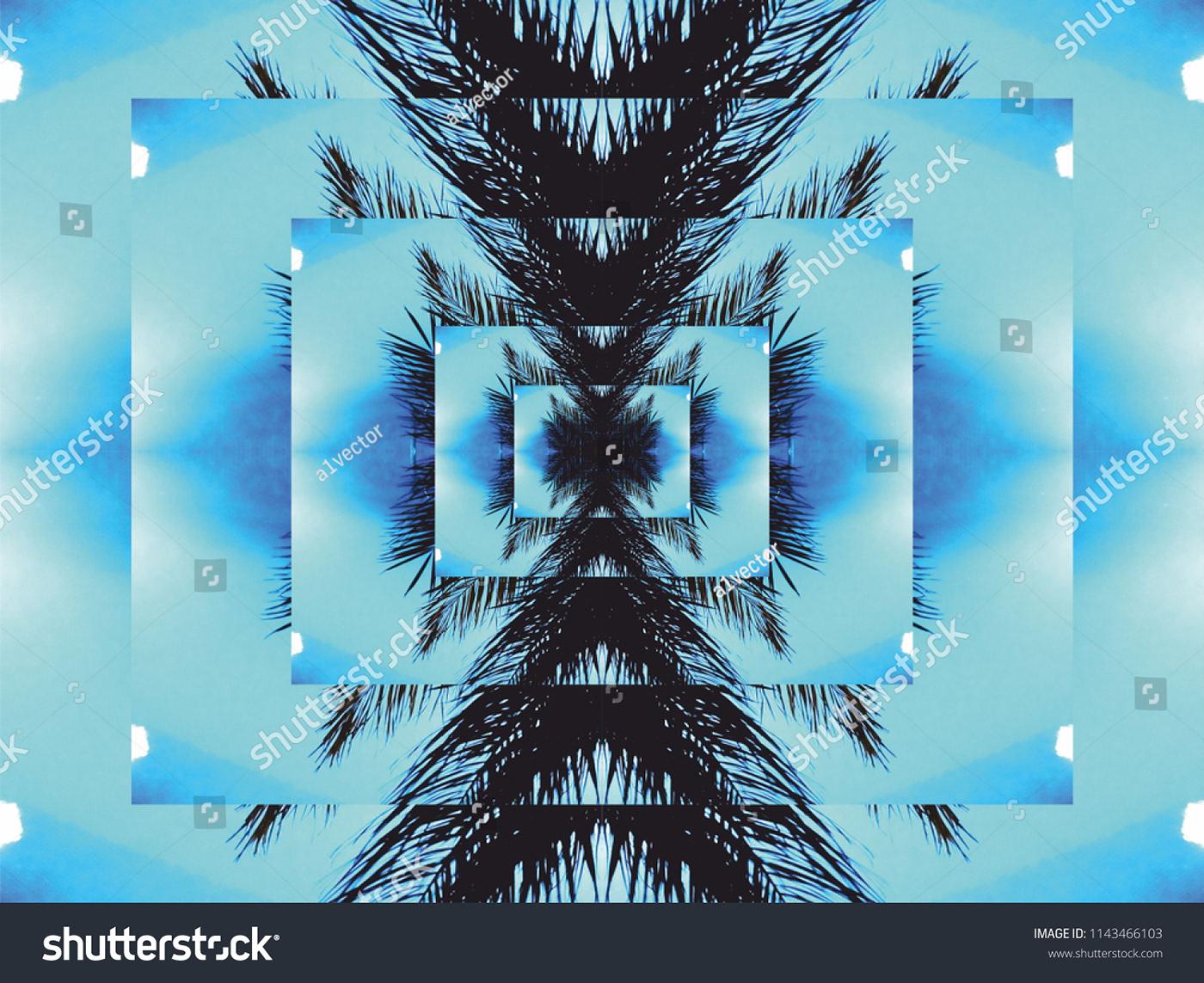 blue sky black palm leaf background on Behance