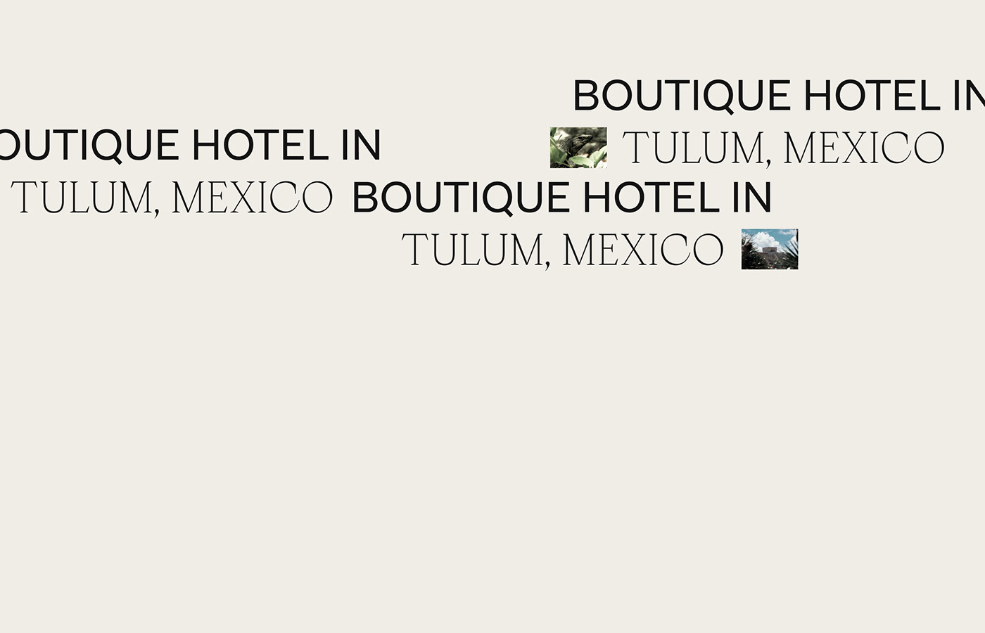 brand branding  digital hotel identity minimal Web Design  art direction  logo lithuania
