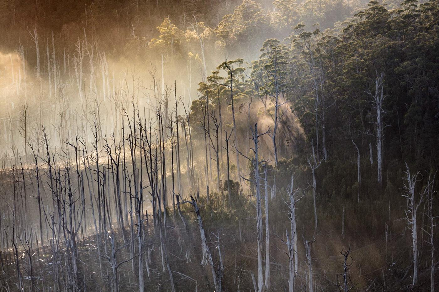 Lake Gordon tasmania StrathGordon Lake Burbery Cradle Mountain crater lake Crater Falls Murchison Dam lake pedder Gordon Dam