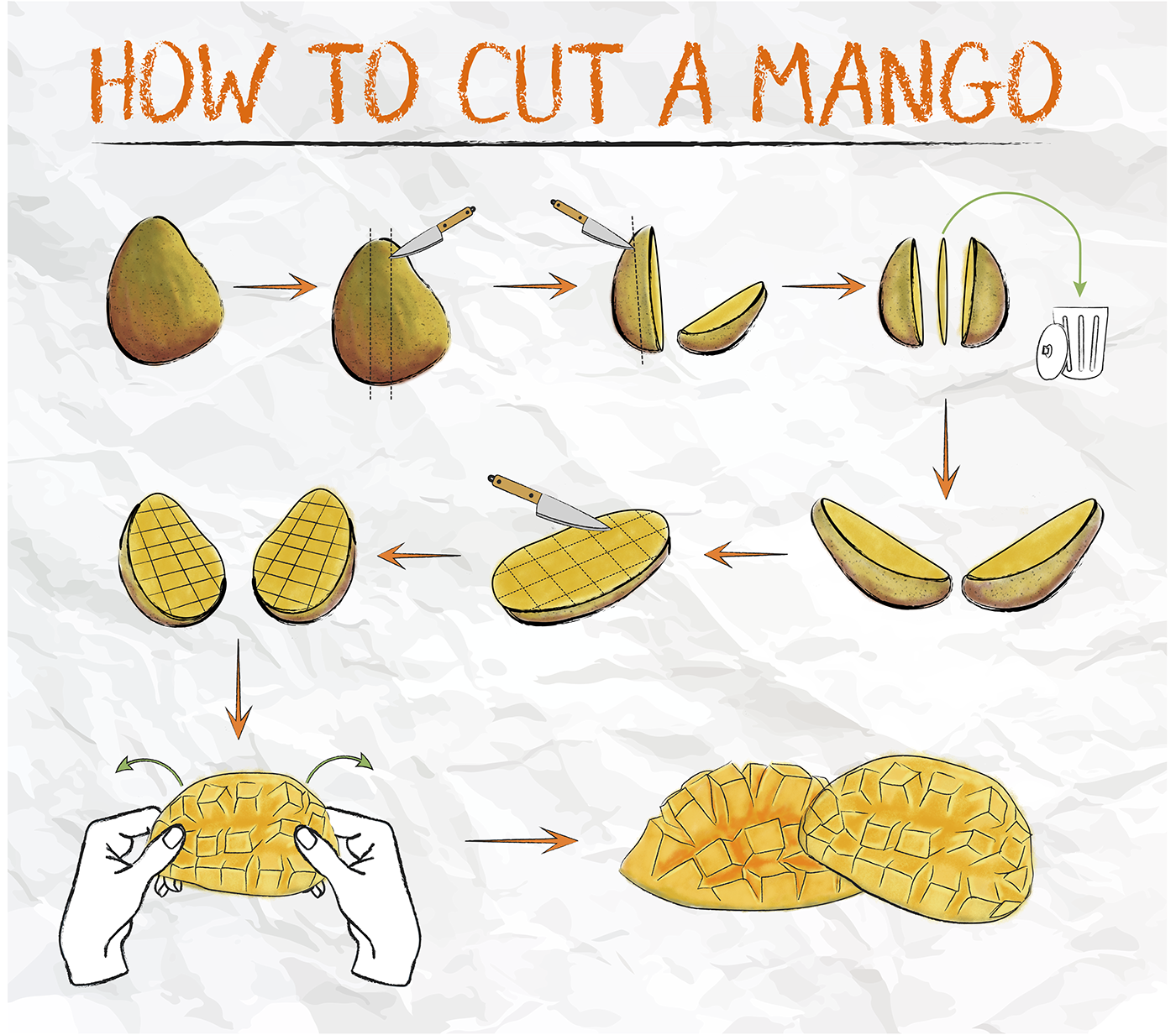 How to cut a mango (Wordless Diagram) on Behance