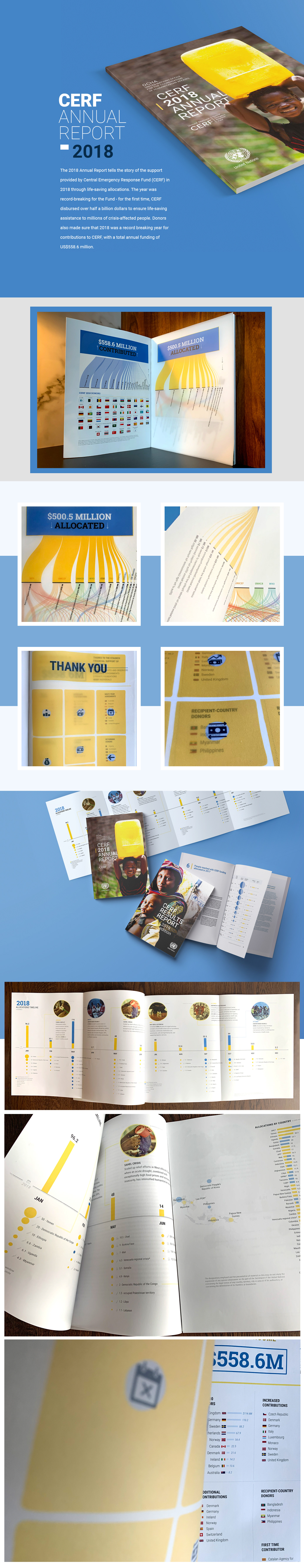 annual report infographic print report