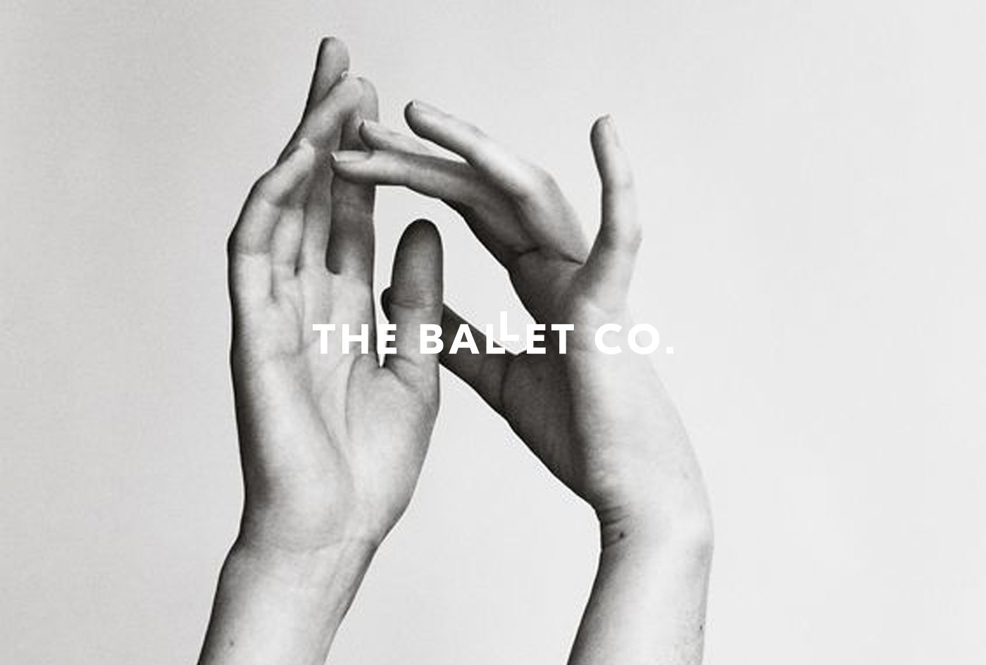 branding  brand identity Web ballet DANCE   graphic design  logo editorial pink