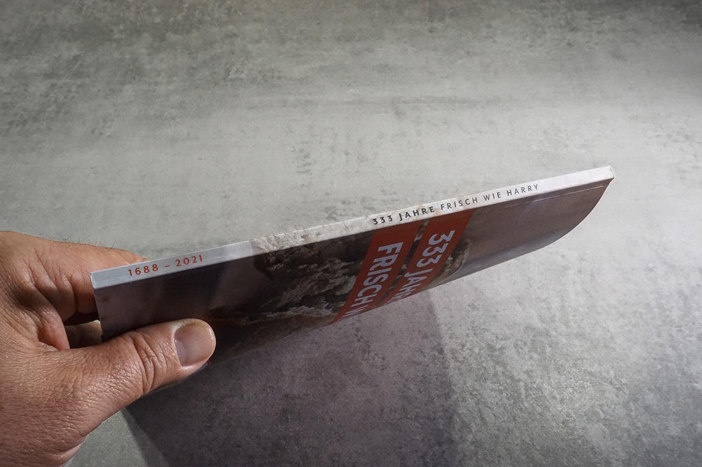 Branding design broschure Corporate Design Drucksachen editorial design  Grafikdesign graphic design  Identity Design rotherdesign typografie