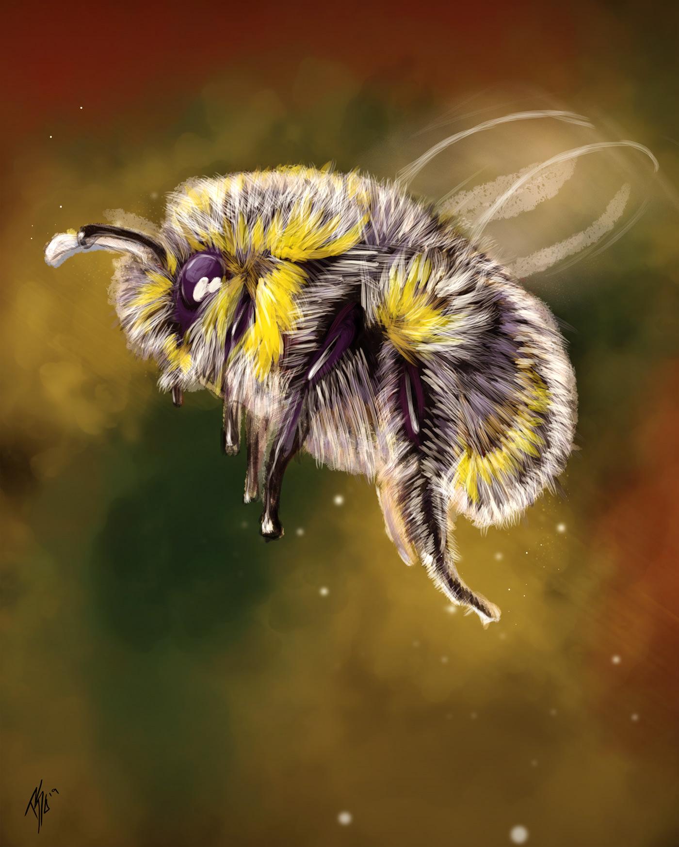 ILLUSTRATION  photoshop Goro brushes custom brushes painting   Bumble Bee animation