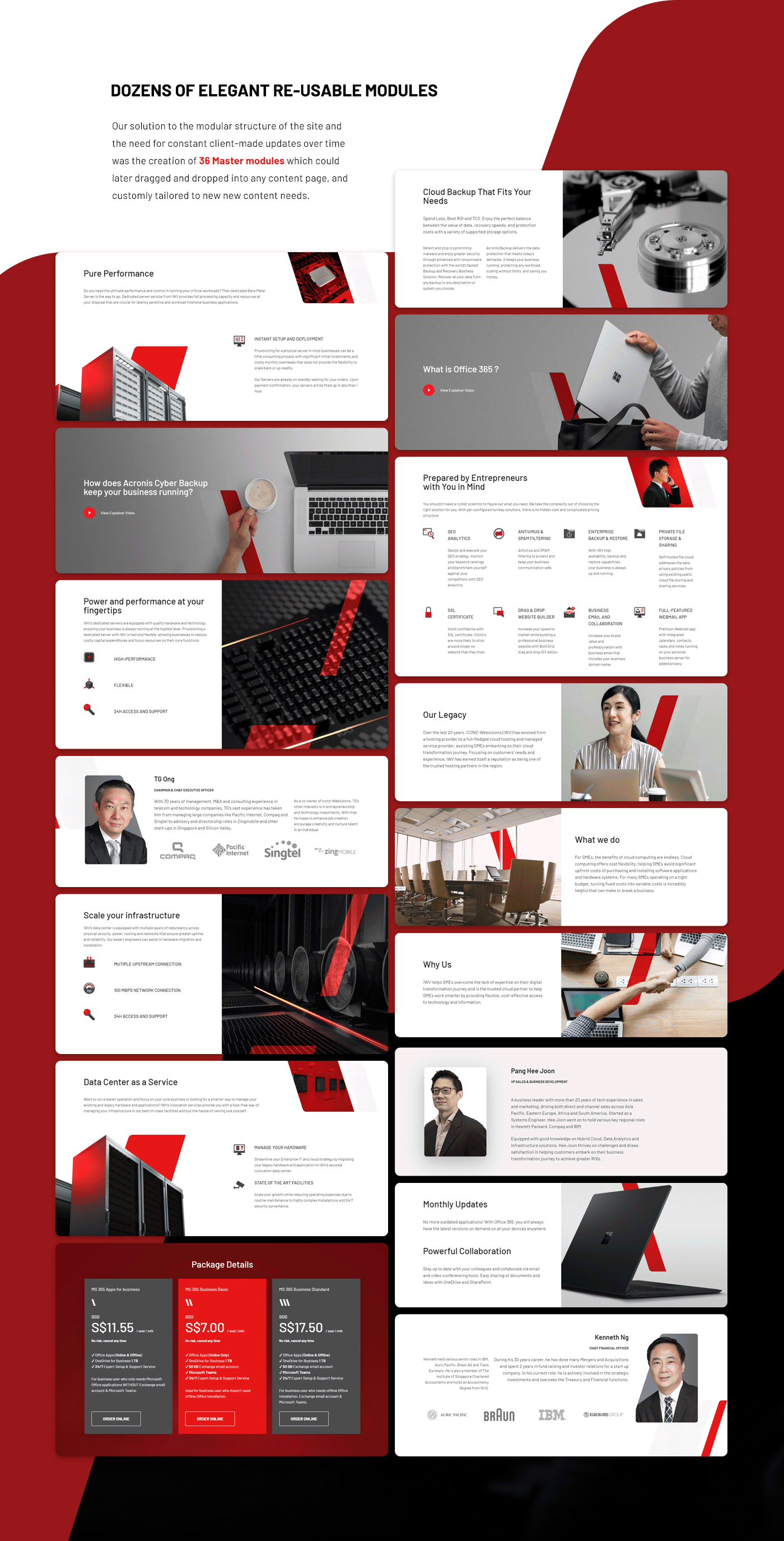 branding  design icons ILLUSTRATION  Logo Design Web Design  Website