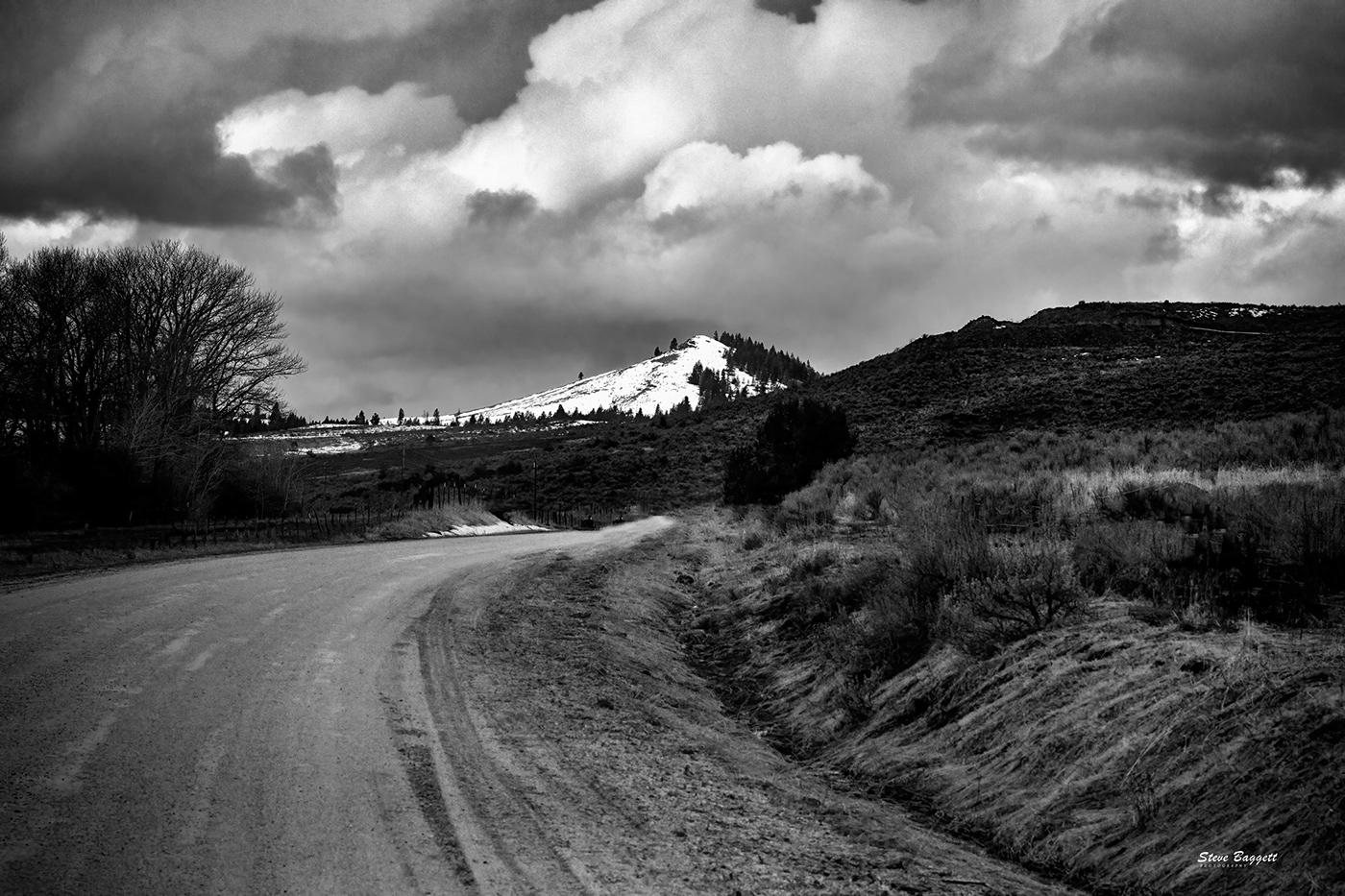 monochrome Oregon sparta