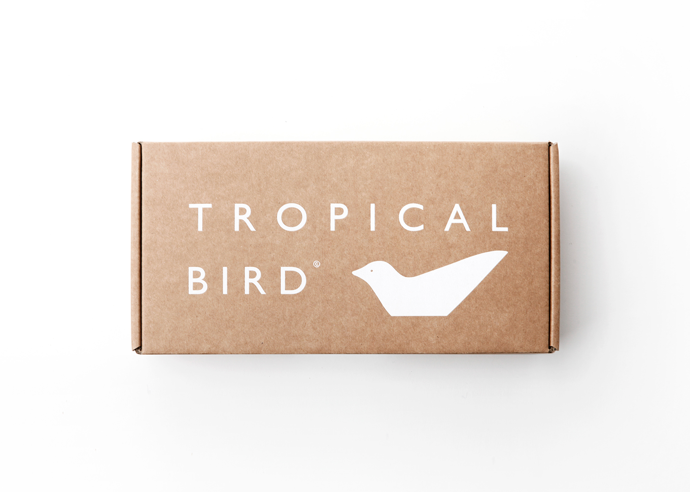 Collection toy Adult Tropical bird product wood design color desktop