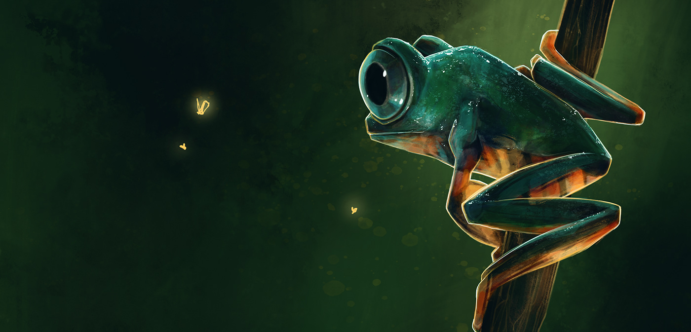 Character cute frog ILLUSTRATION  story wildlife