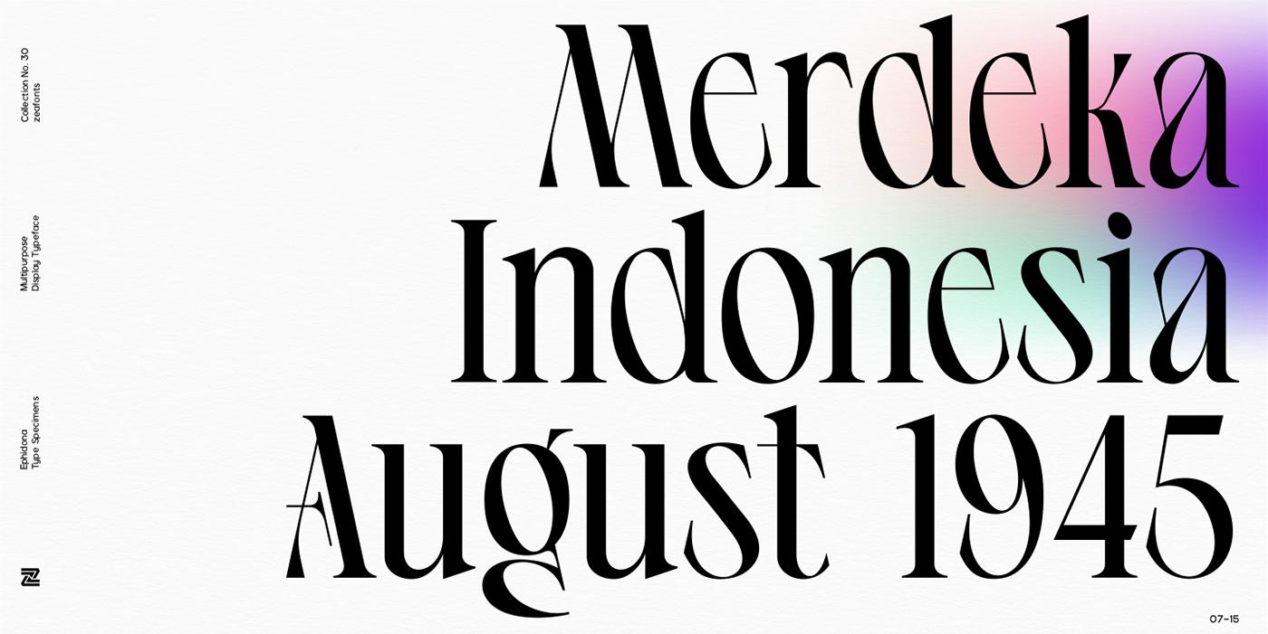 branding  font lettermark ligature Logotype serif type design Typeface typography   wordmark