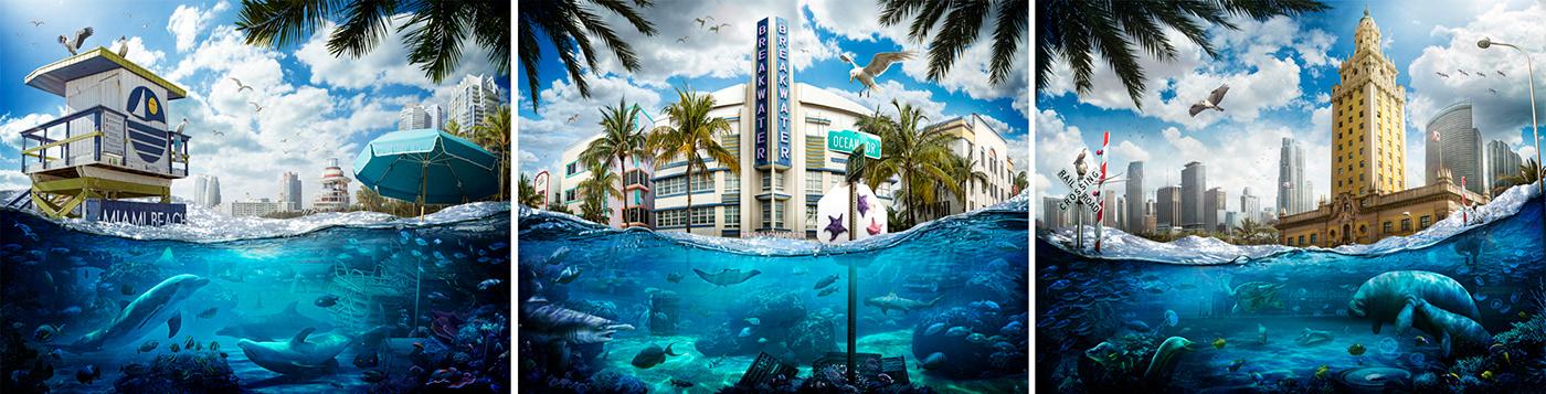climate change global warming Sea Level Rise environmentalism Ocean miami underwater future Nature photomanipulation