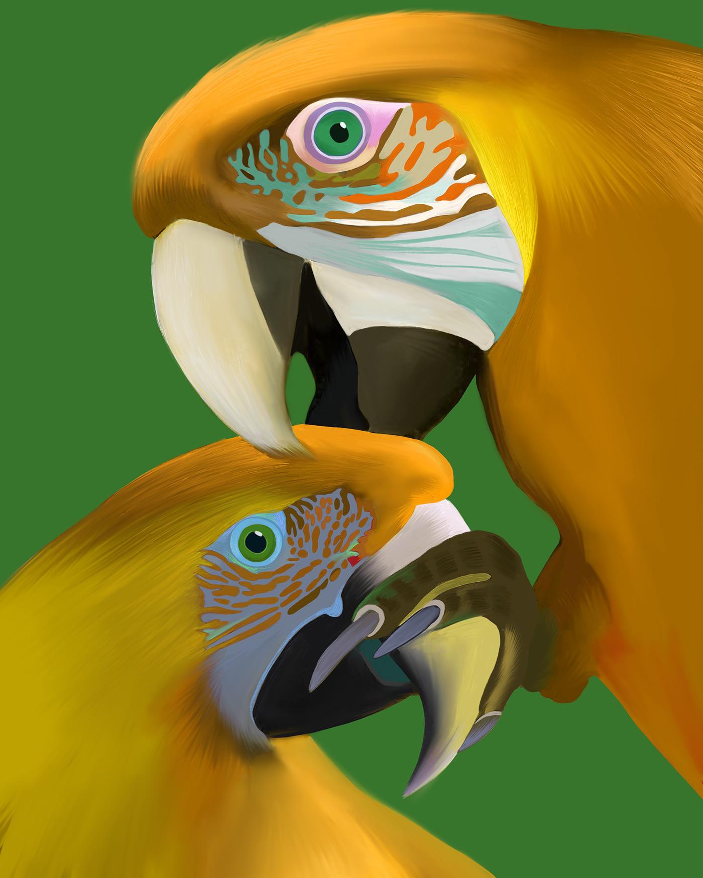 animalart digitalart Digitalartist ILLUSTRATION  procreateart Quarantine selfisolation