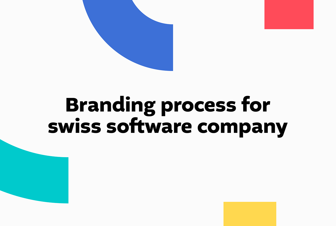 Colorful software company identity