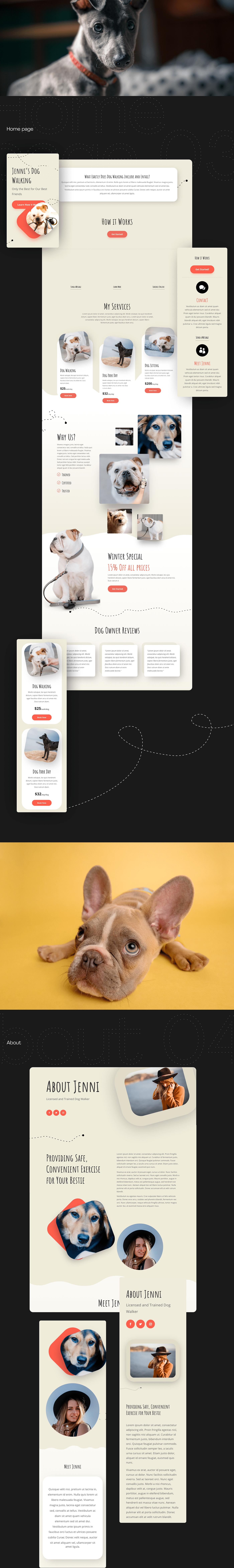 design Interaction design  UI/UX Web Design  web development  Website