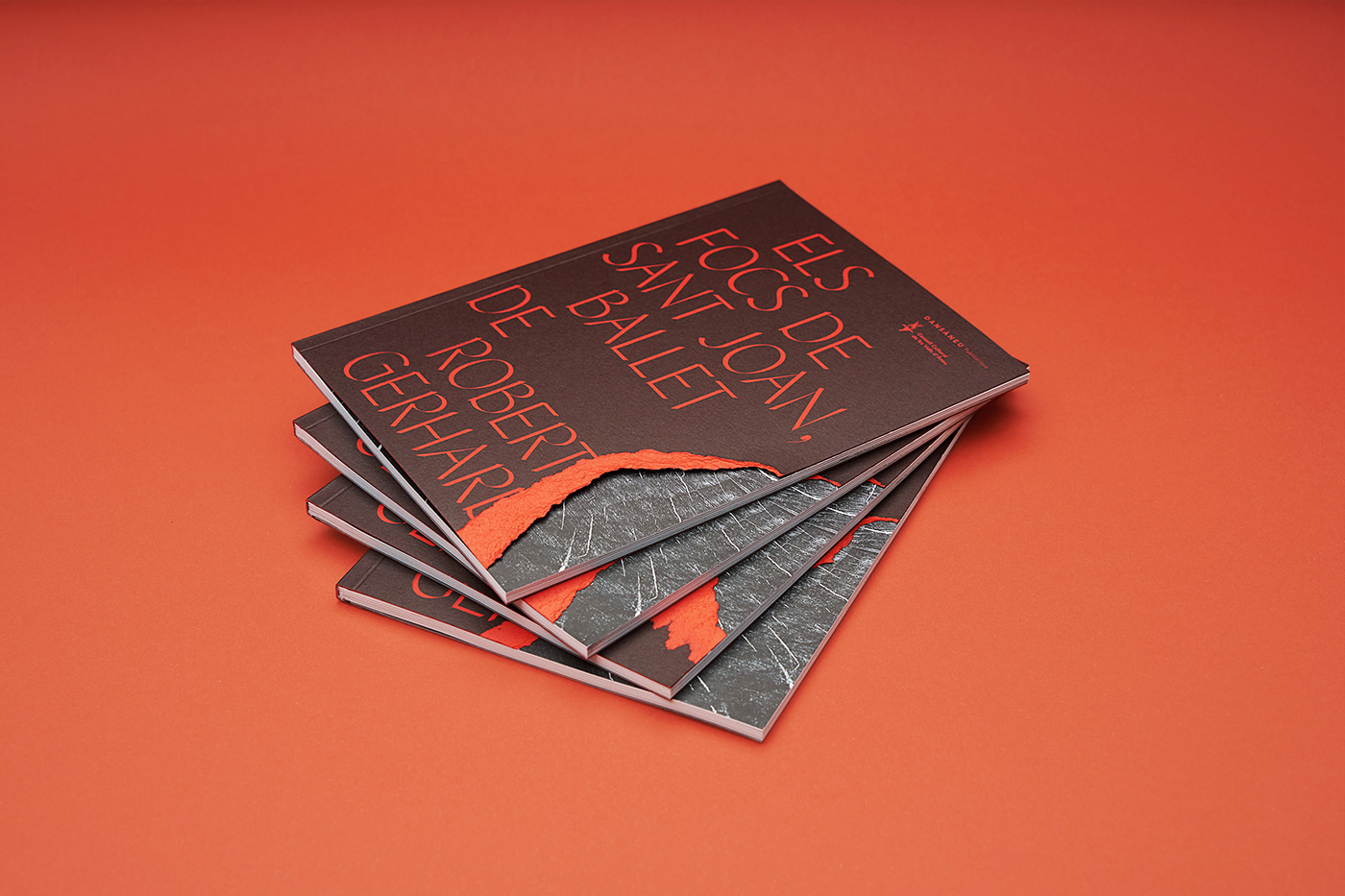 artwork book cover editorial fire grid Layout red stripes typography