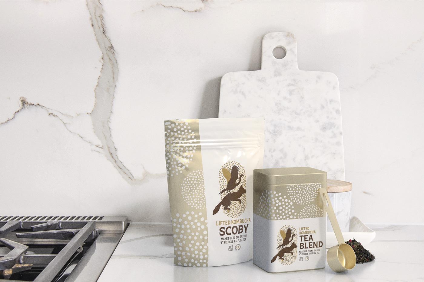 kombucha Packaging logo scoby bottle tin bag organic FOX bird