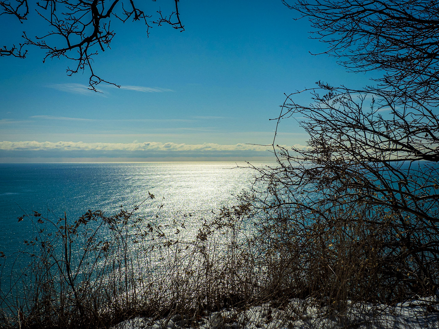 garden Lake Ontario Park photo walk Rosetta McClain Garden Scarborough Bluffs winter