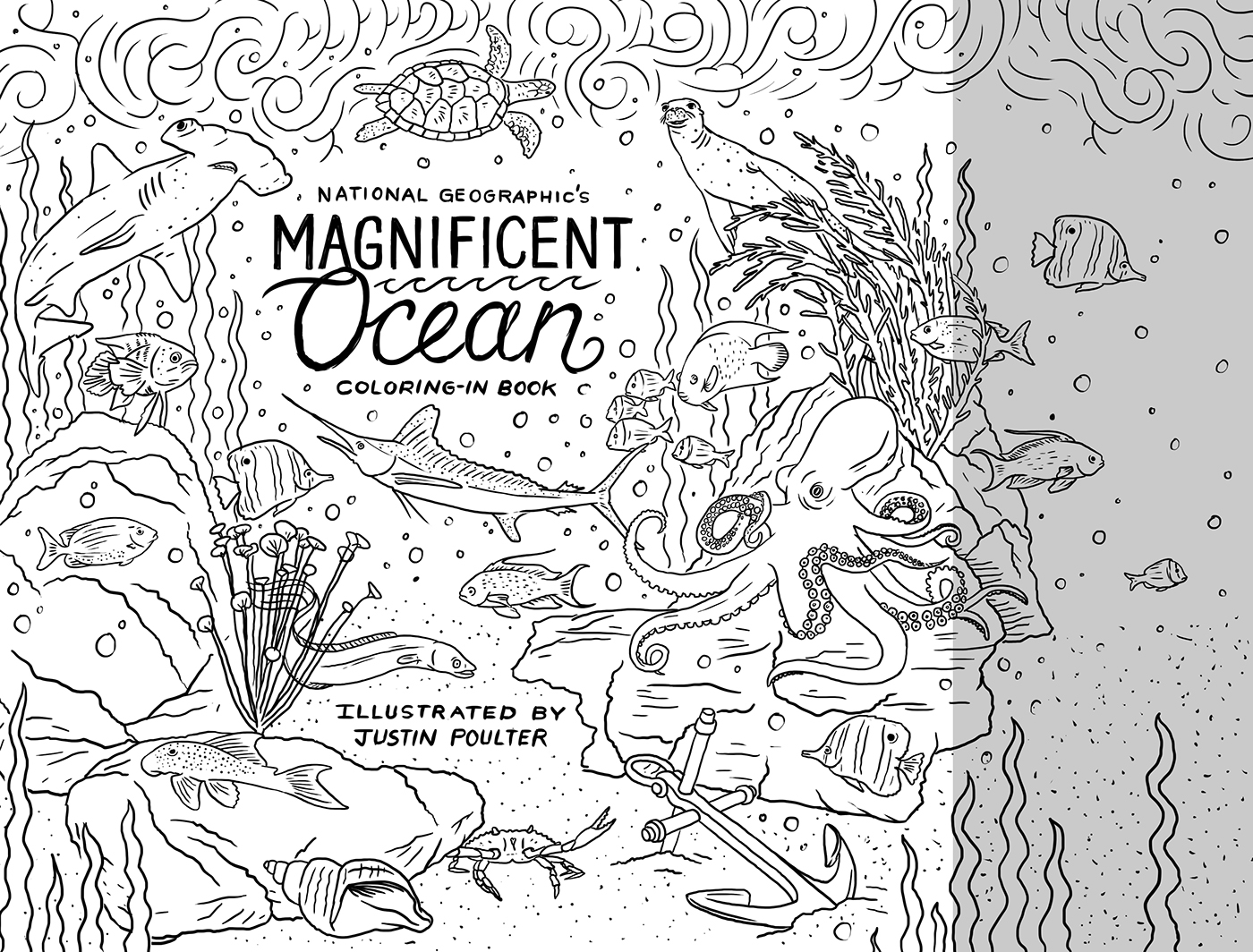 coloring book national geographic animals magnificent ocean justin poulter adult coloring book Nature