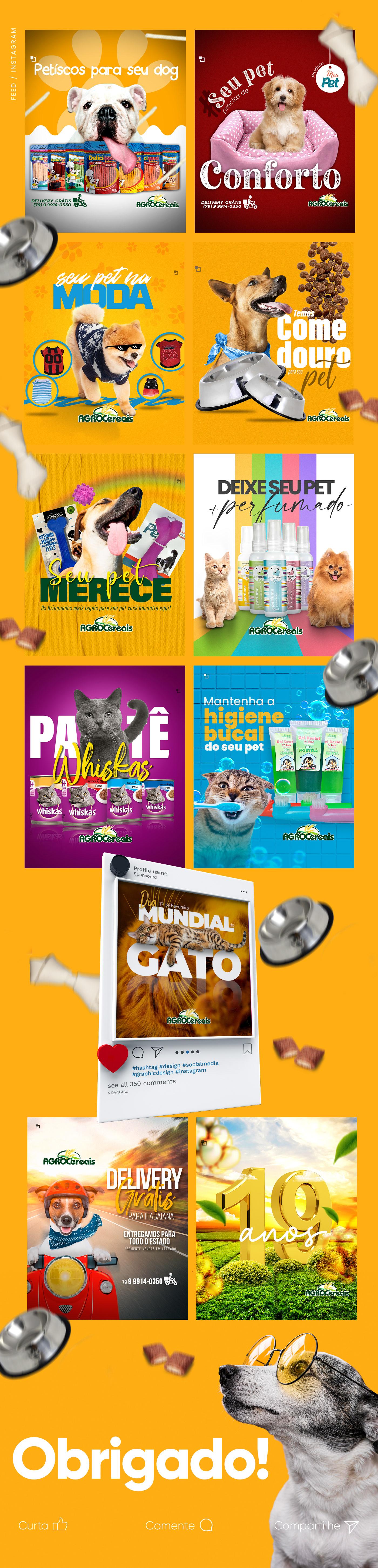 agropecuária animais facebook instagram marketing digital petshop photoshop rede social sergipe social media