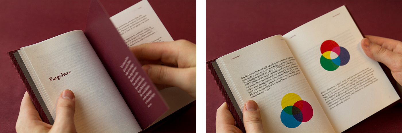 graphic design book Guide burgundy colortheory typo composition history color westerdals