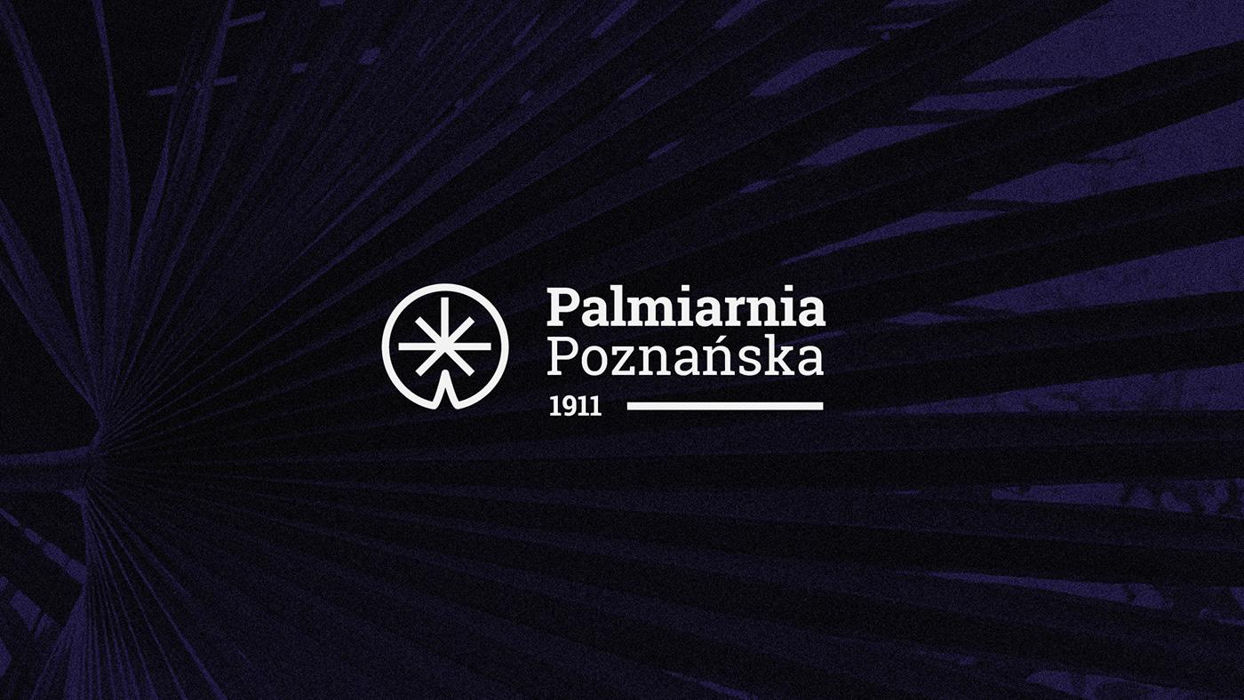 branding  graphic design  icons logo palm house plants key visual