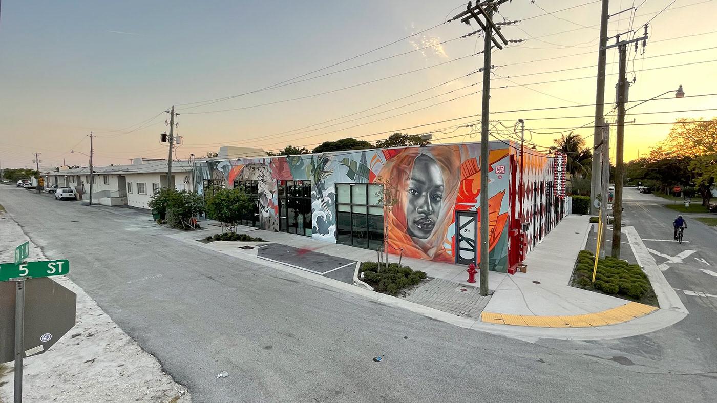arquitectura arte urbano diseño Illustrator Lula Goce Mural streetart urban art