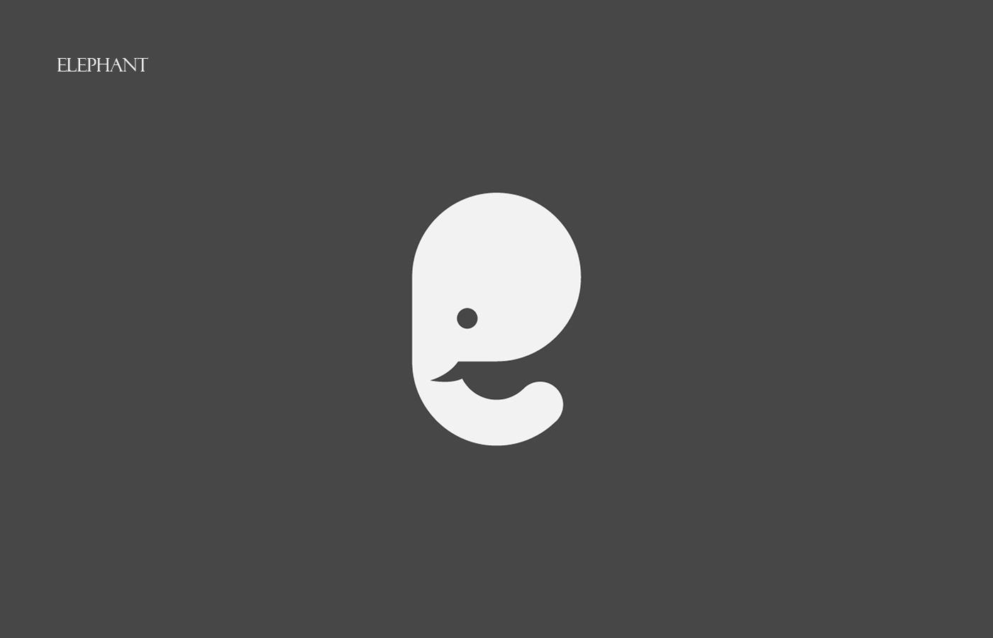 animals alphabet letters 36daysoftype logo type creative colors lettering typographic ABC instagram symbol Saudi Kuwait
