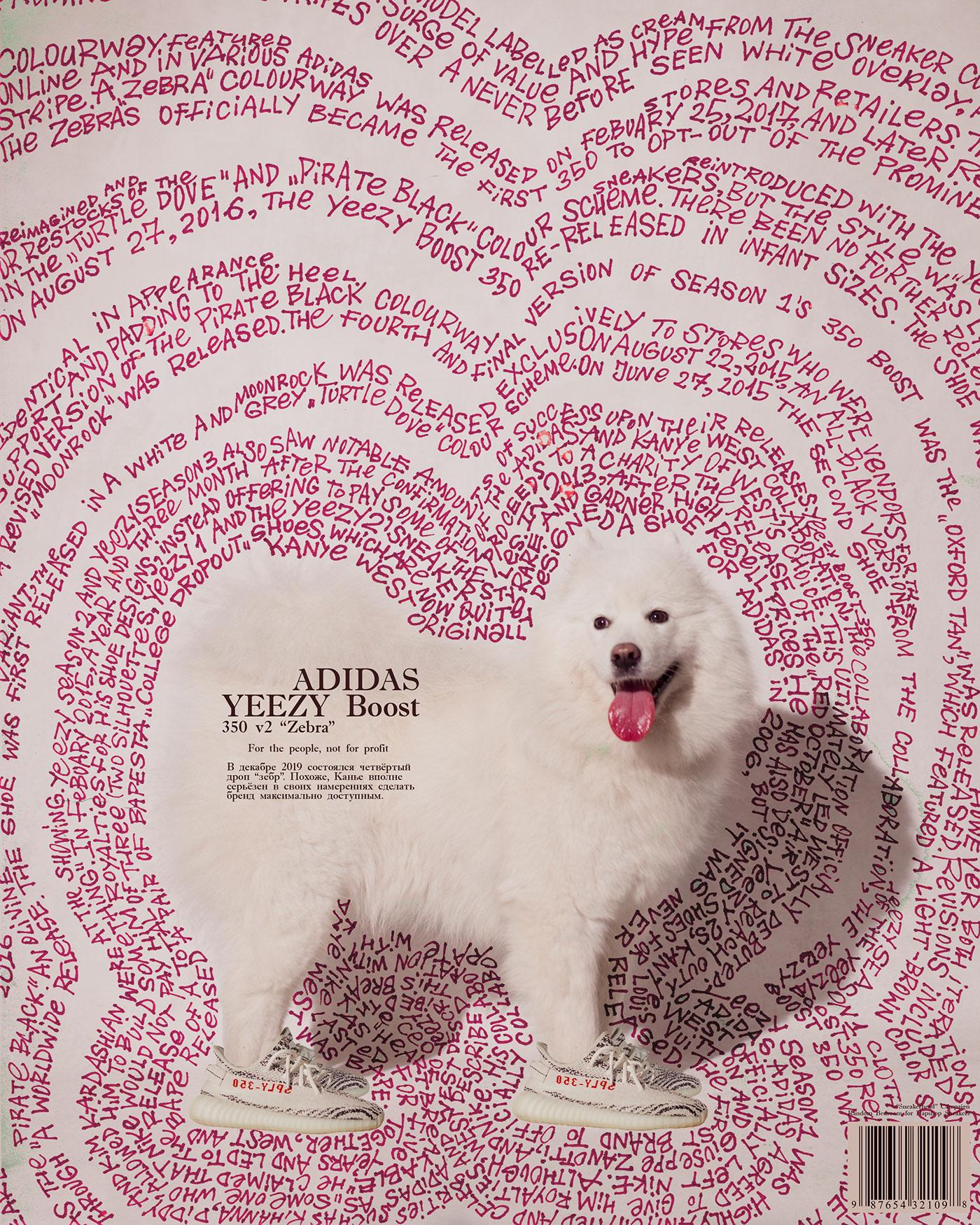 Image may contain: carnivore, animal and dog