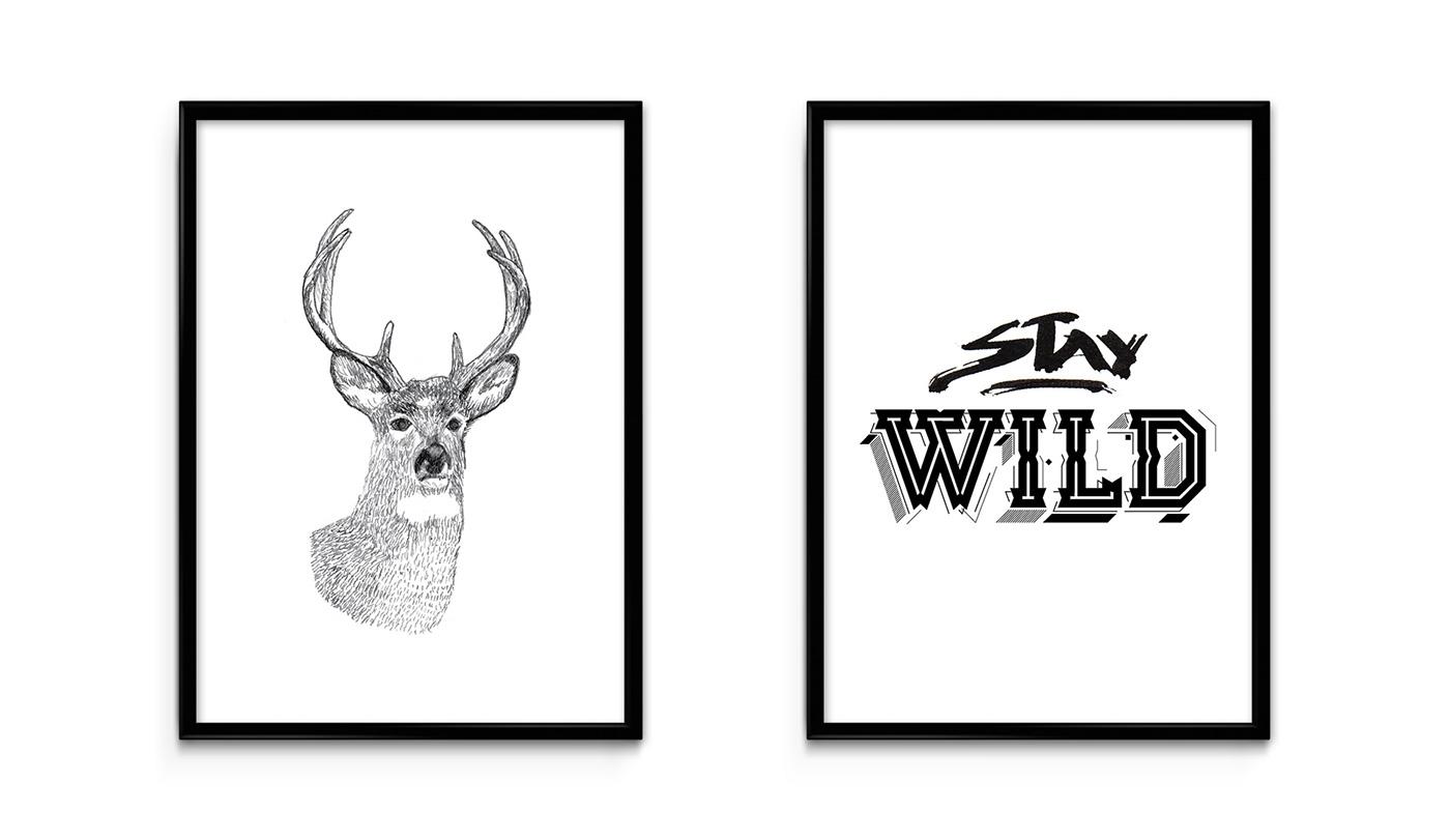 poster design lettering art cuadros draw dibujo deer alce