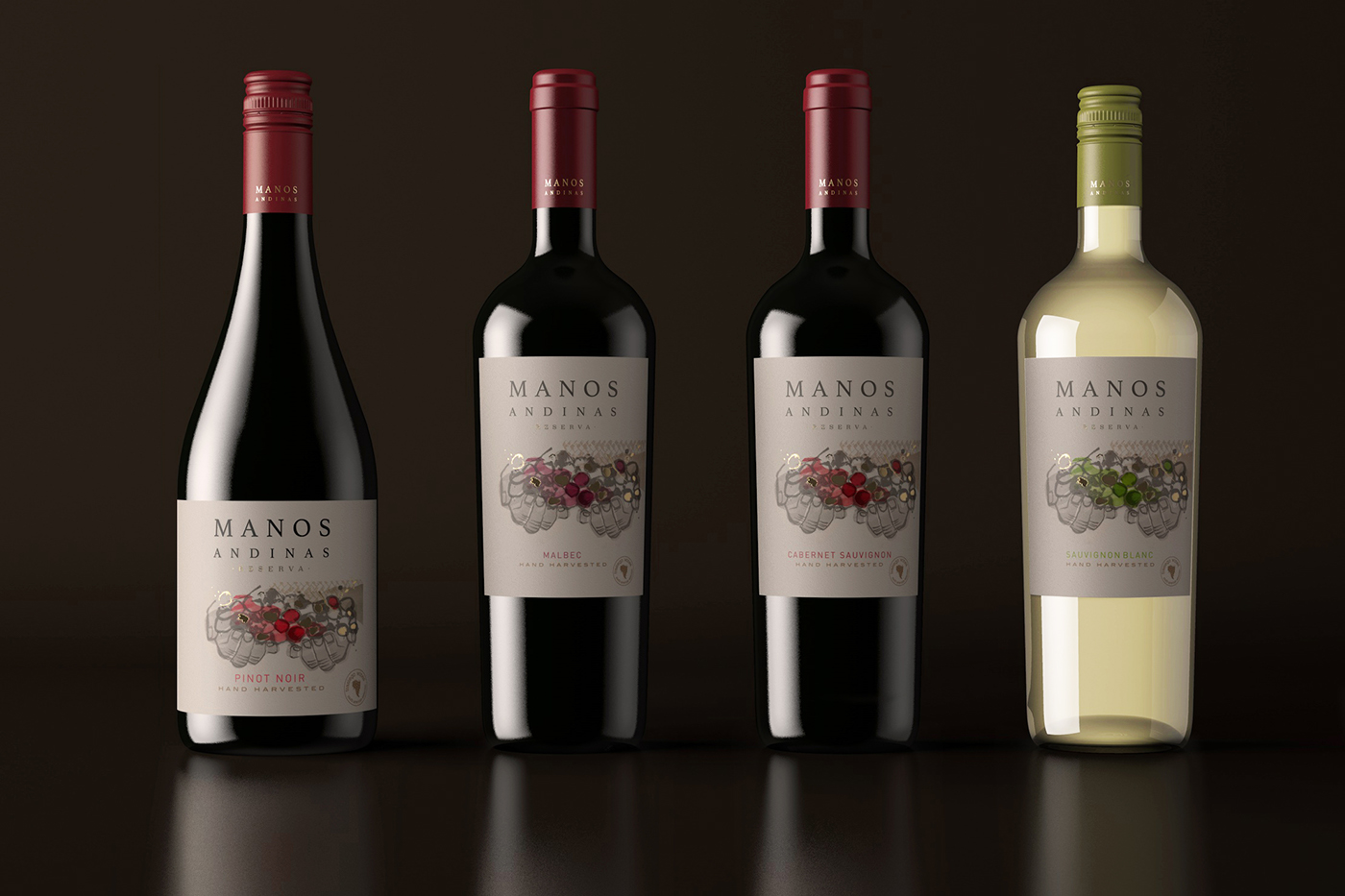wine Packaging Label design chile fair trade handcrafted