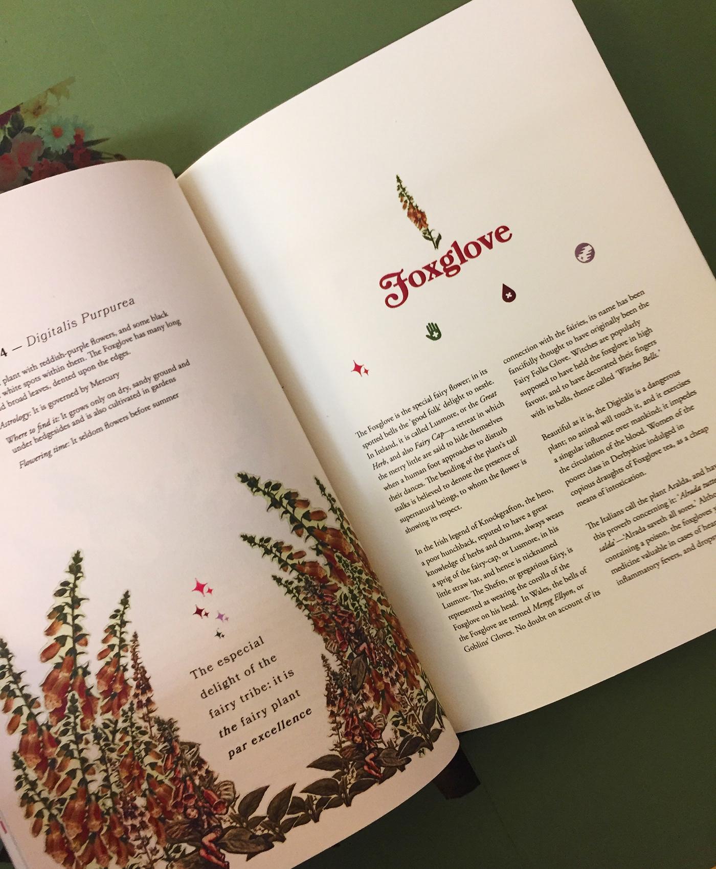 Herbarium of folklore superstition on behance herbarium of folklore superstition izmirmasajfo