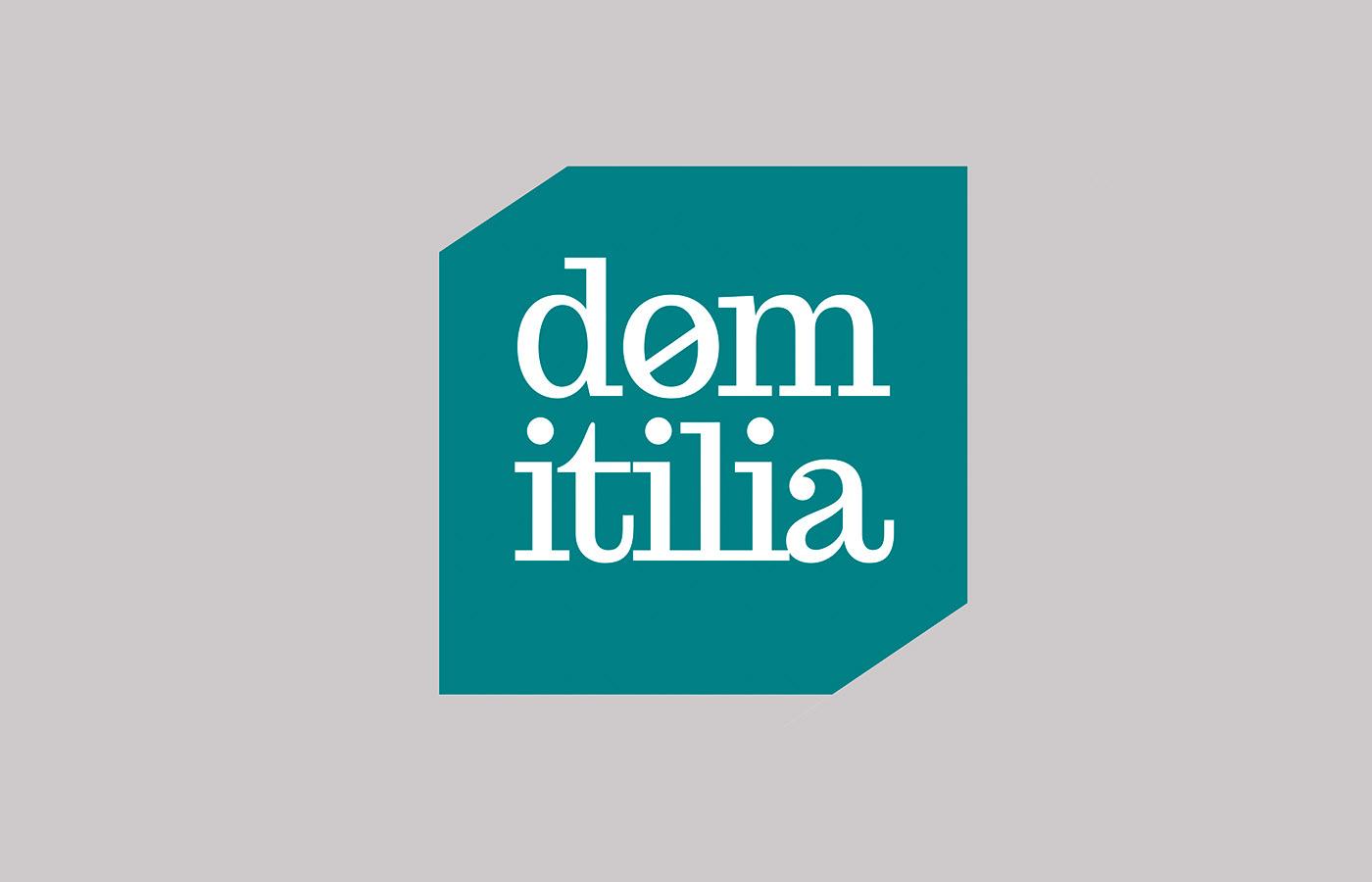 naming Tagline logo paleta cromatica tipografias ESTILO FOTOGRÁFICO Layout sistema firma marca domitilia