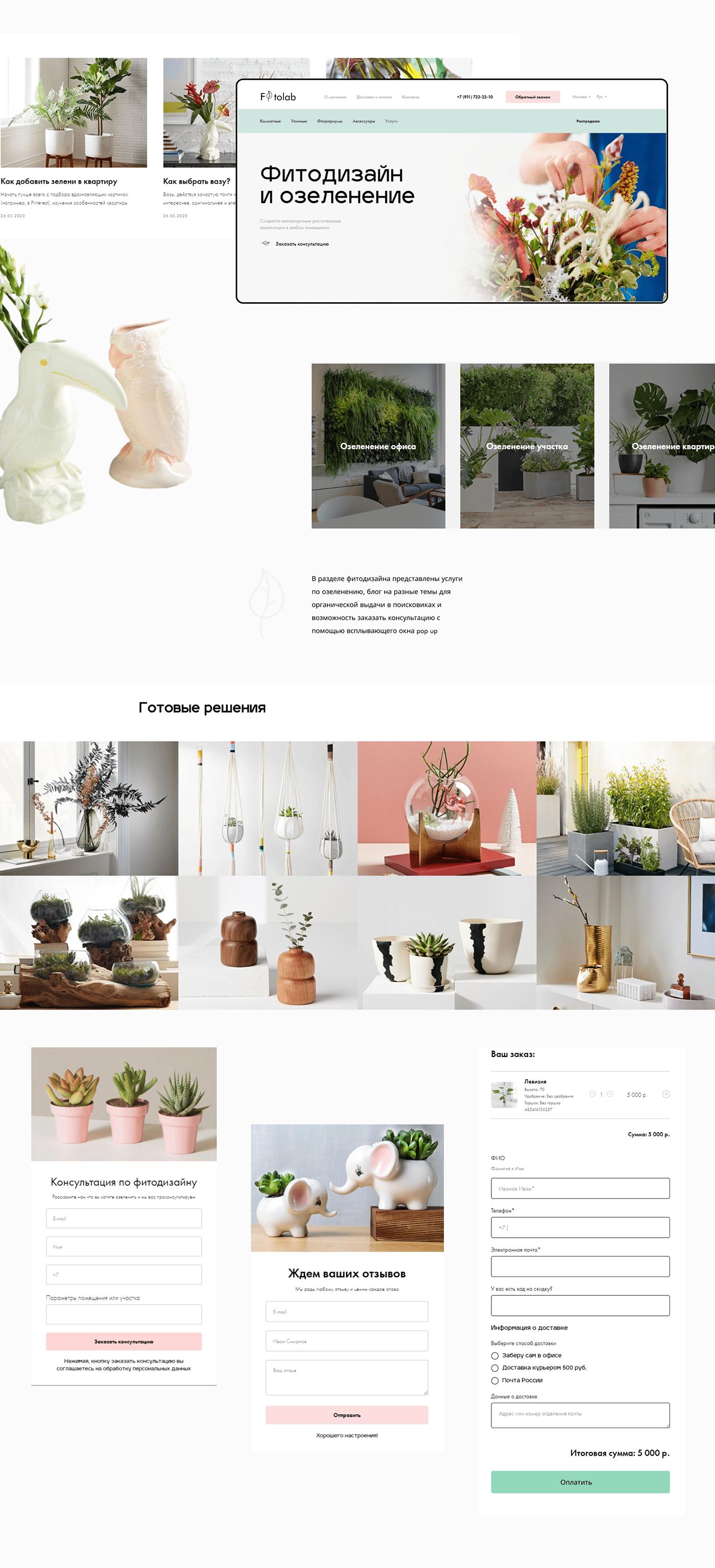 clean Minimalism plants shop store UI ux Webdesign Website интернет-магазин