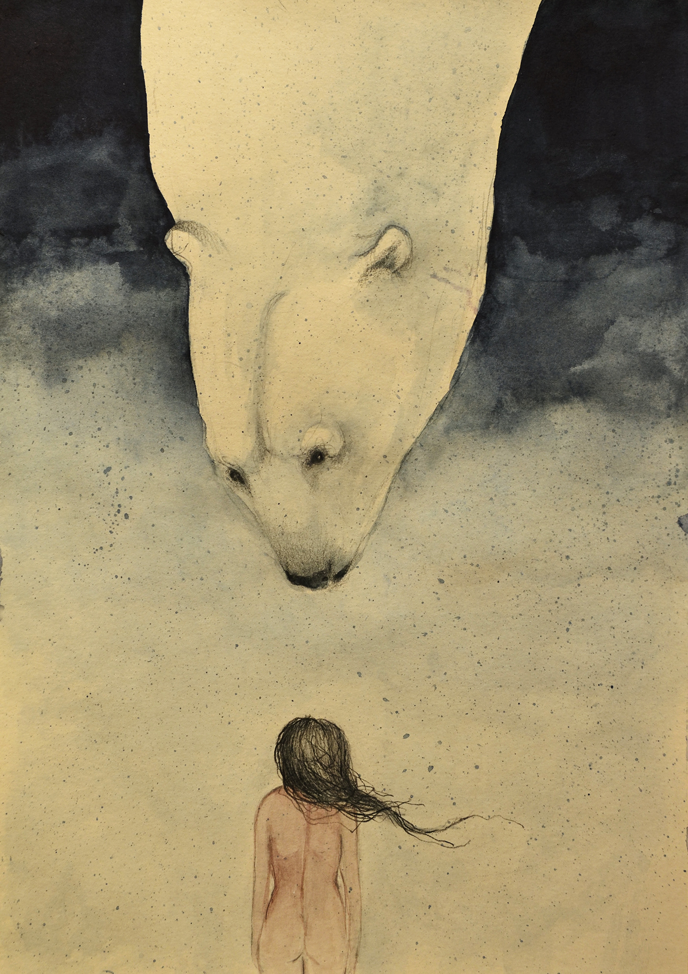bear draw dream illustrations watercolor