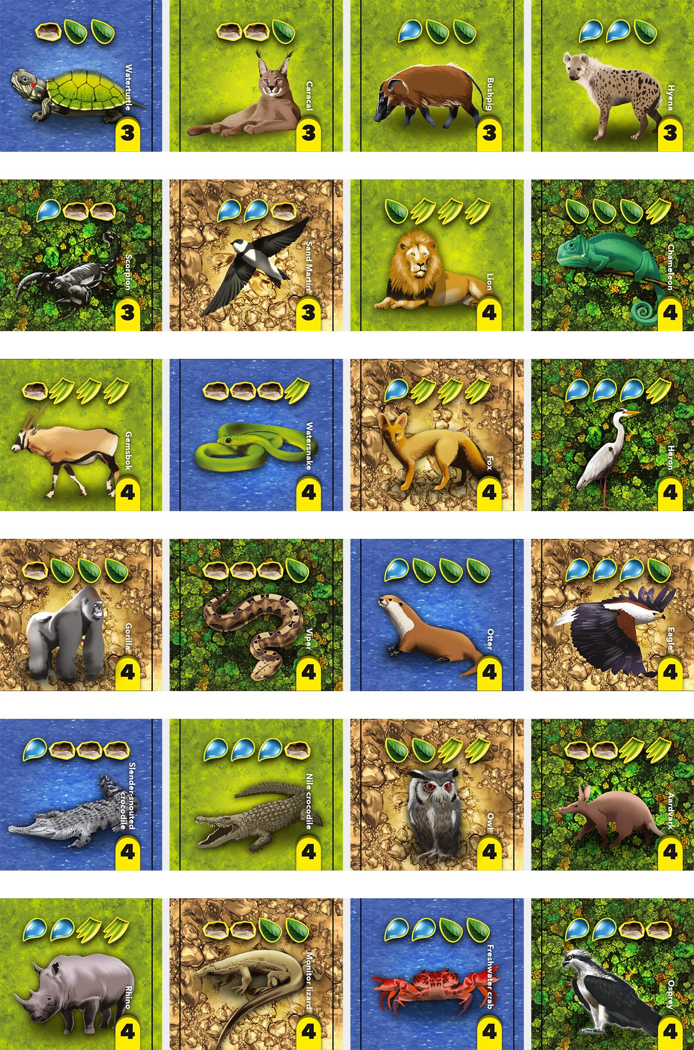 boardgame Kickstarter tabletop ILLUSTRATION  animal wildlife tiles