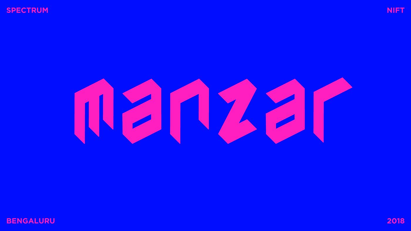 branding  collateral design graphic design  Identity Design