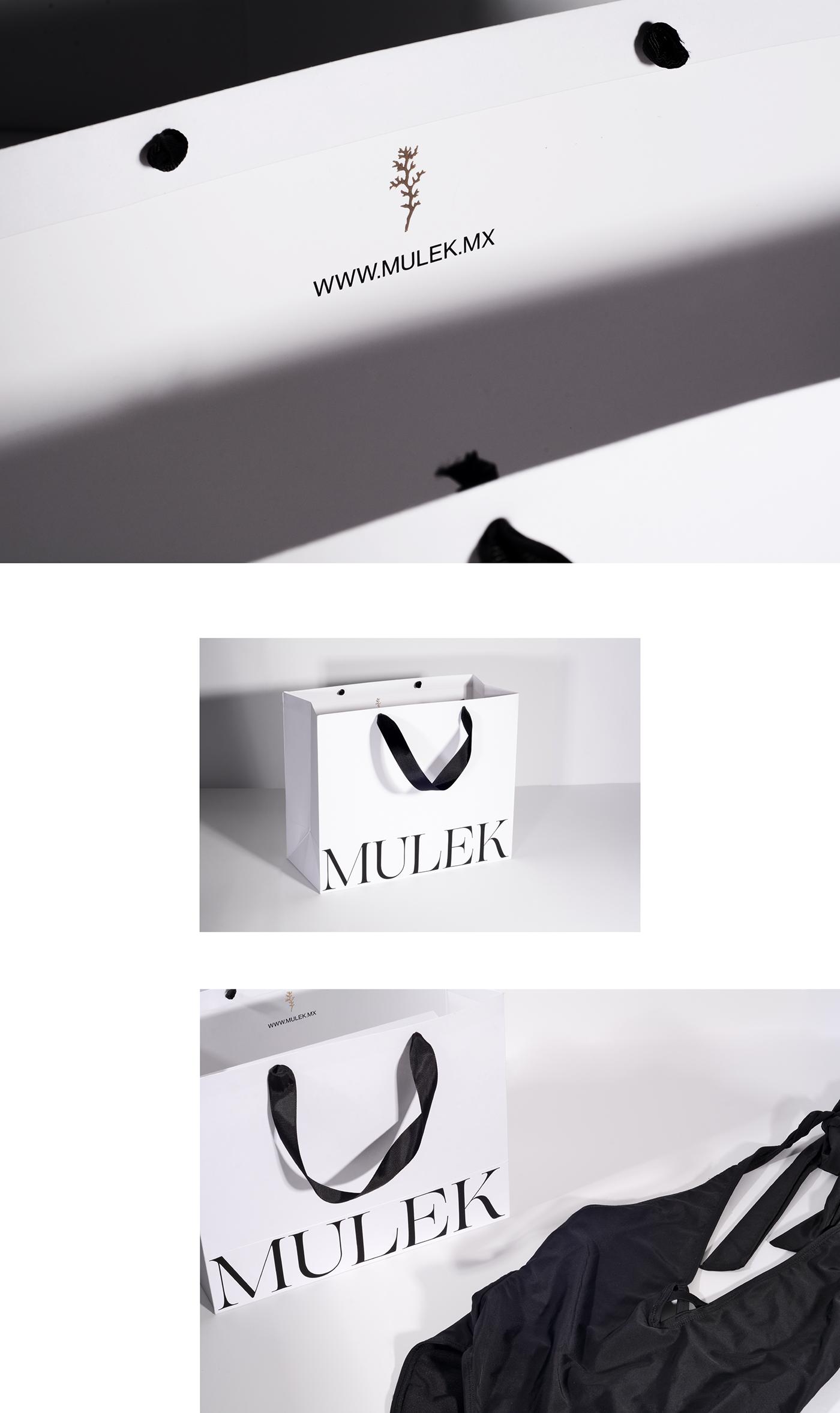 branding  brand identity swimwear Layout art direction  beach graphic design  Business Cards logo Packaging