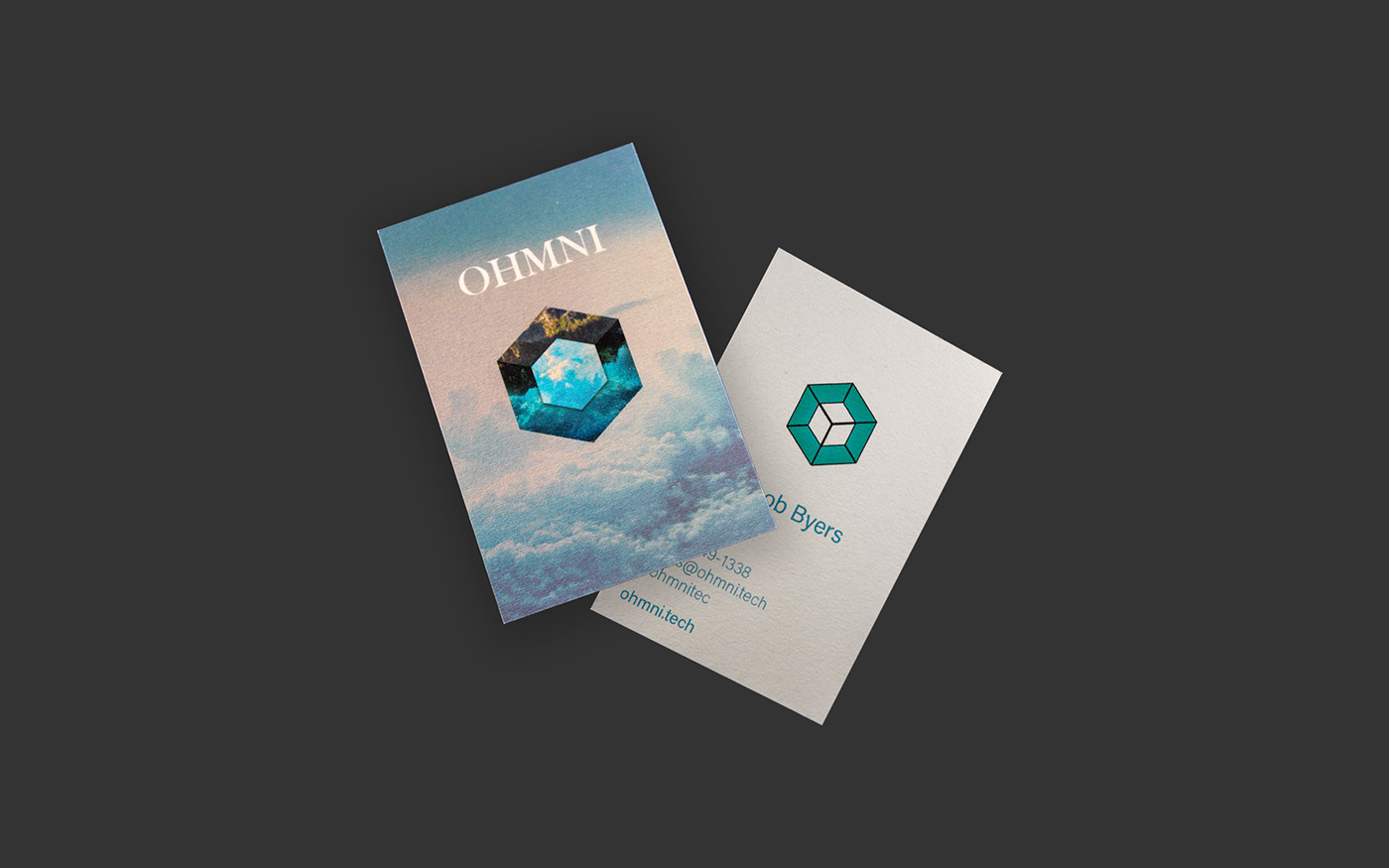 app development All Things OMNI ohmni web creation hexagon