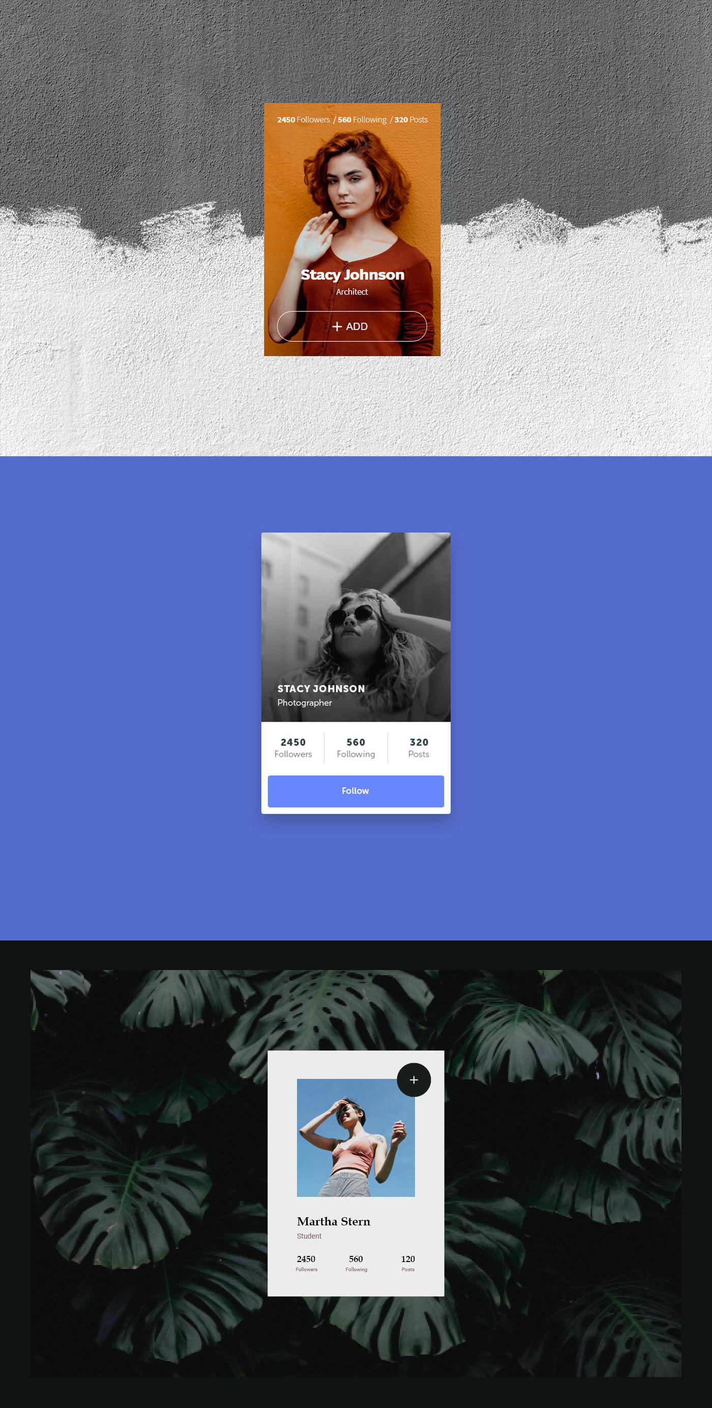 profile_card profile user_card user web_design Web Interface user_interface
